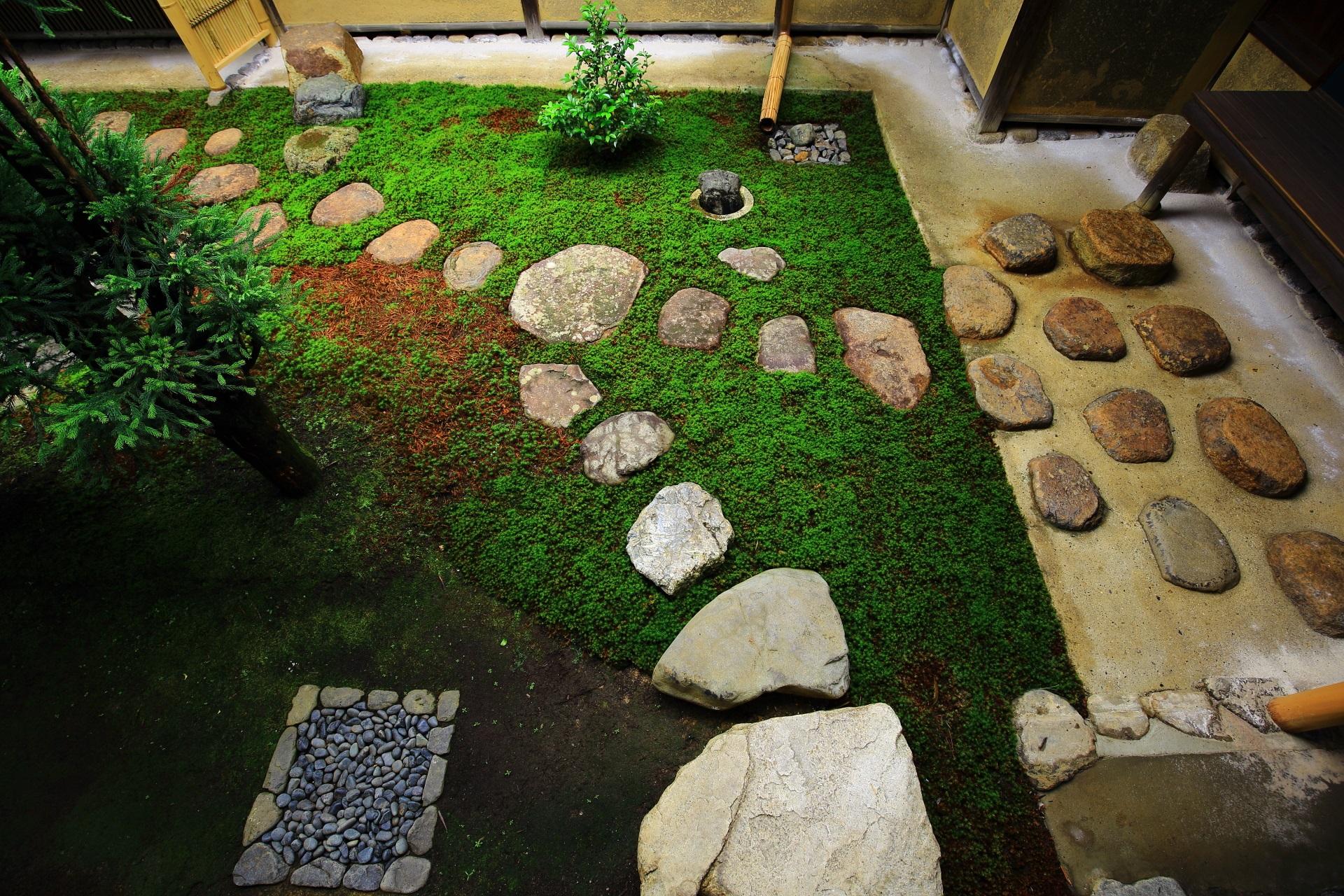 瑞峯院の苔と飛び石の風情ある露地庭
