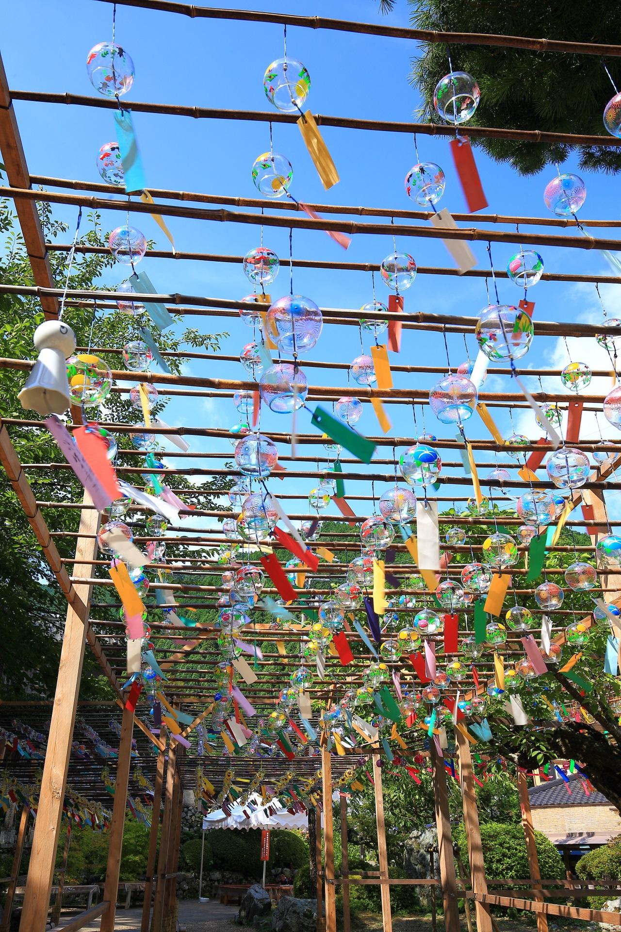 風が強めに吹けば涼しげを通り越して賑やかな音色を奏でる正寿院の風鈴
