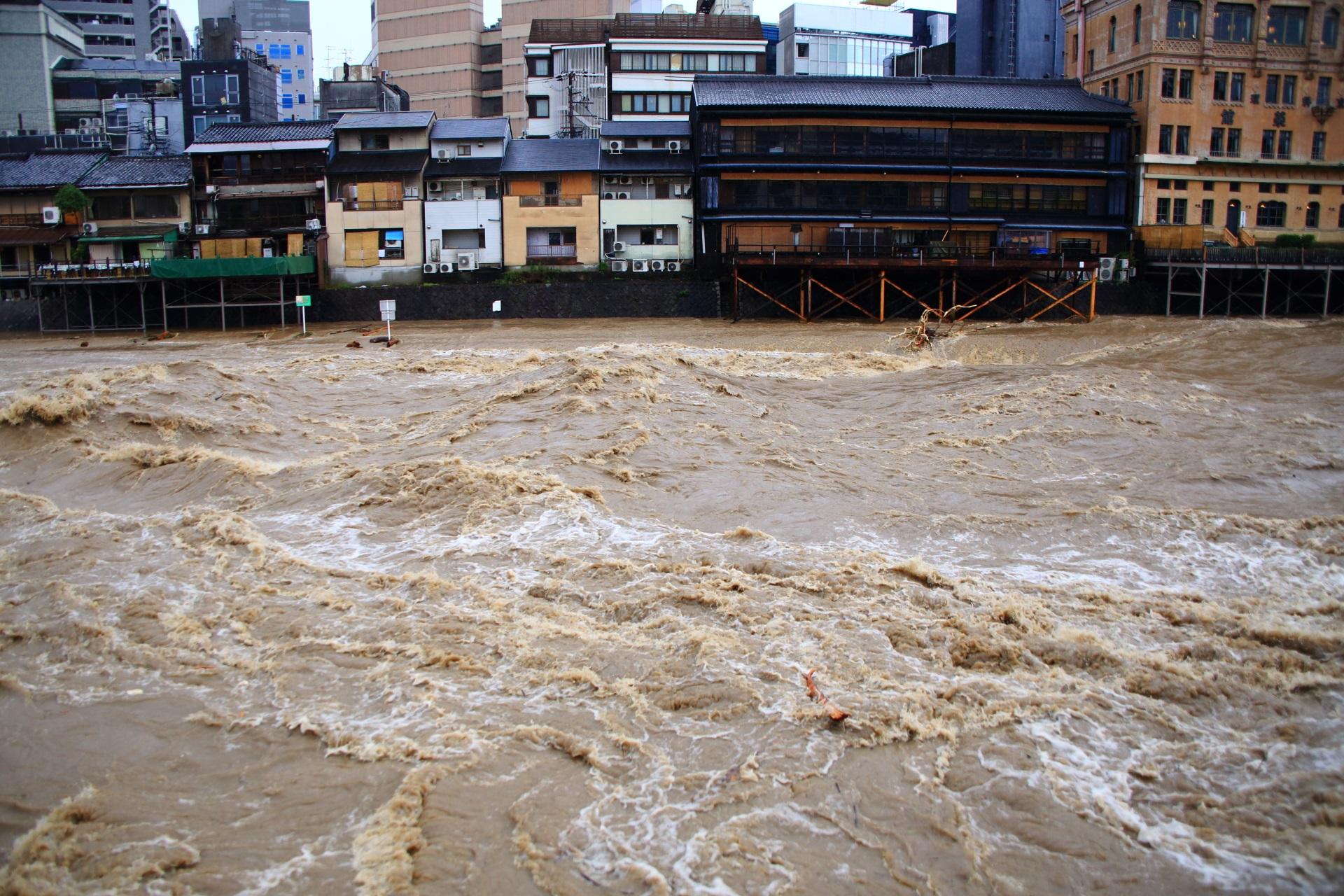 激しく波打ってうねる鴨川の激流