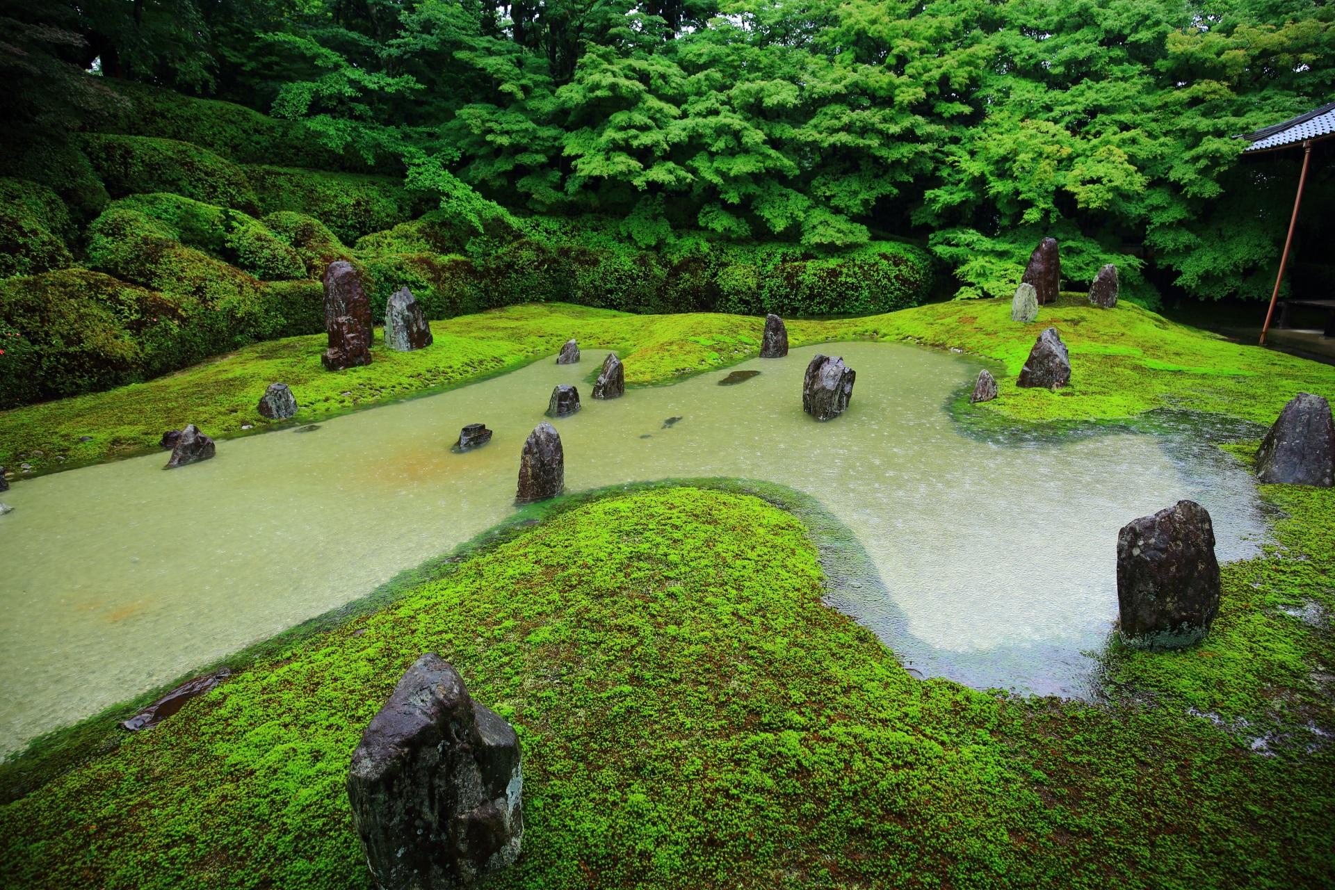 枯山水庭園に出来る苔に覆われた流れる川のような池