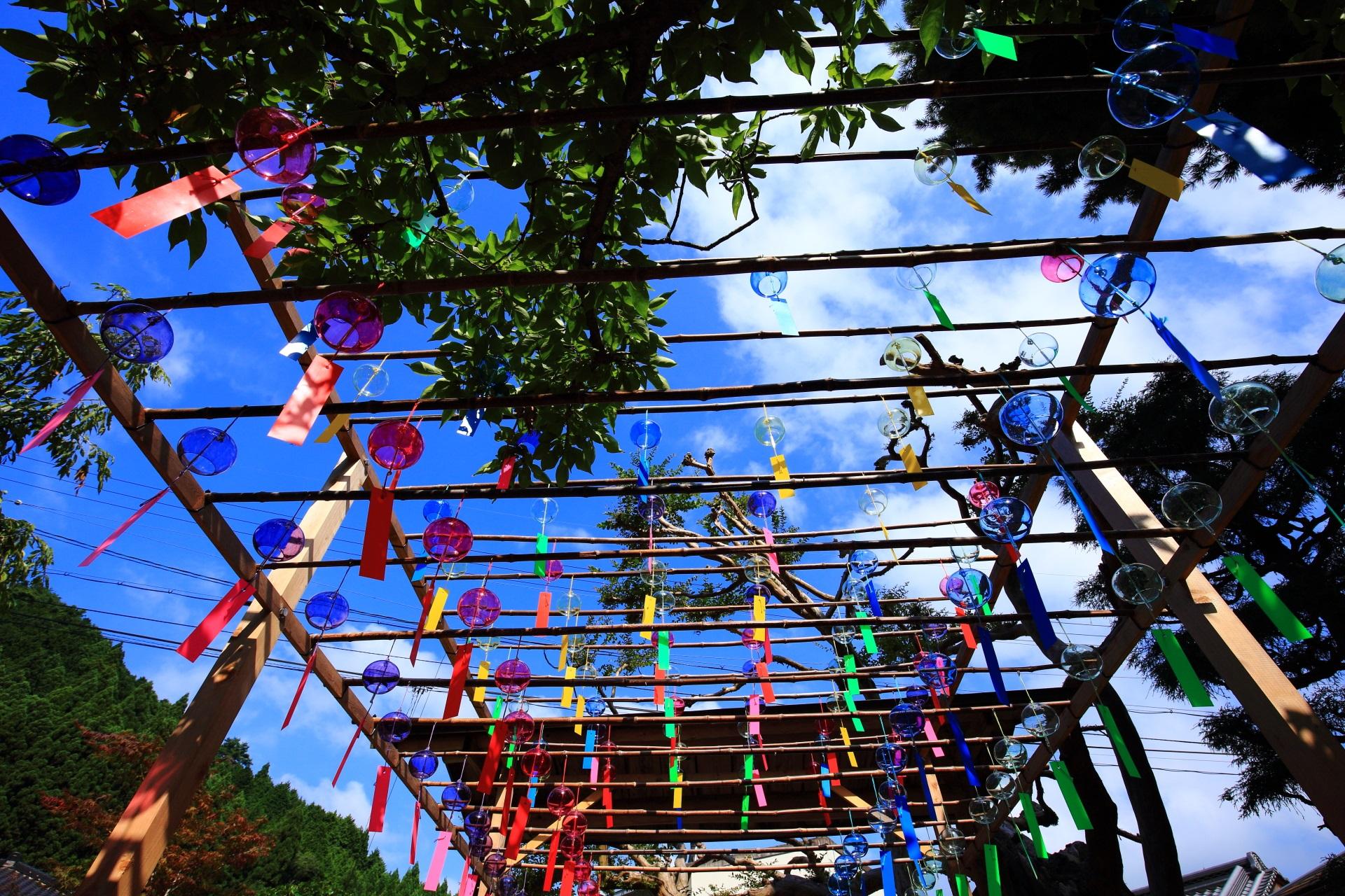 正寿院のカラフルな短冊の赤と青の爽やかな風鈴