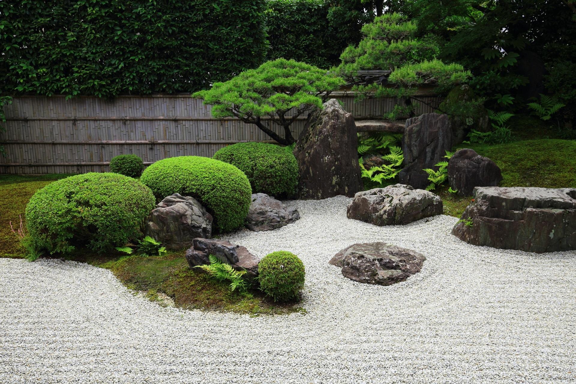 高画質 写真 興臨院 庭園