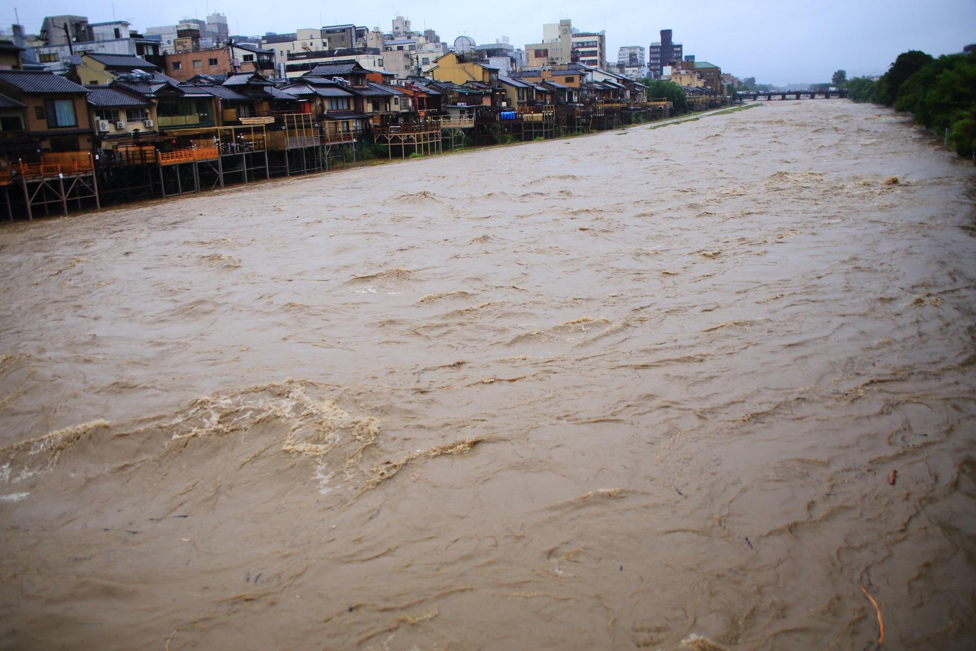 溢れる濁流で川床も水に浸かってしまいそうな激流の鴨川