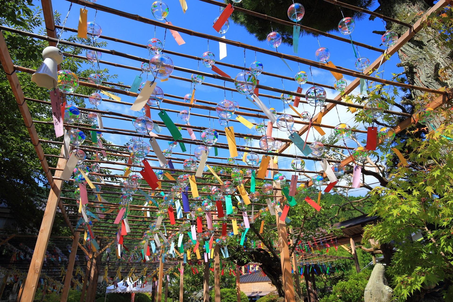 風が吹けば一斉に賑やかで心地よい音色を響かせる正寿院のたくさんの風鈴