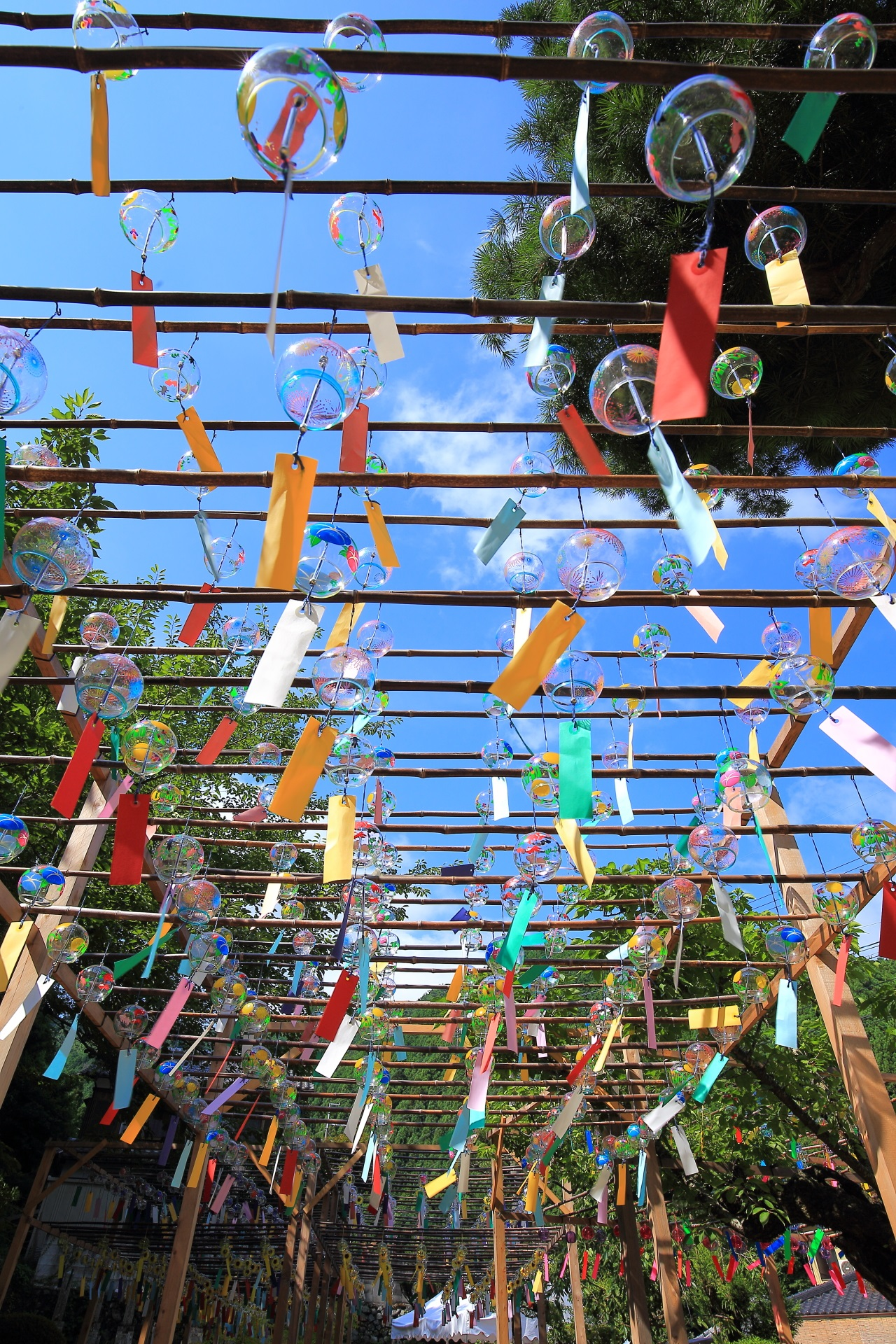 正寿院の素晴らしい風鈴まつりと夏の情景