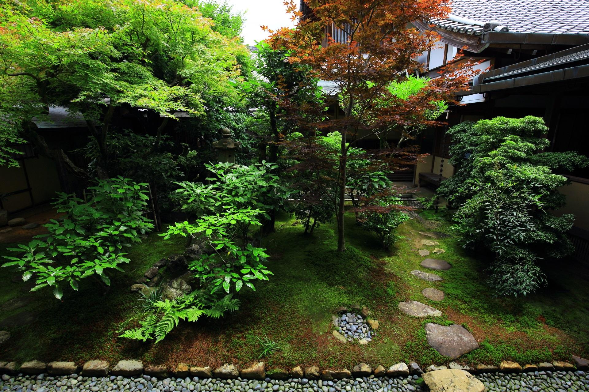 興臨院の風情たっぷりの方丈東側の中庭