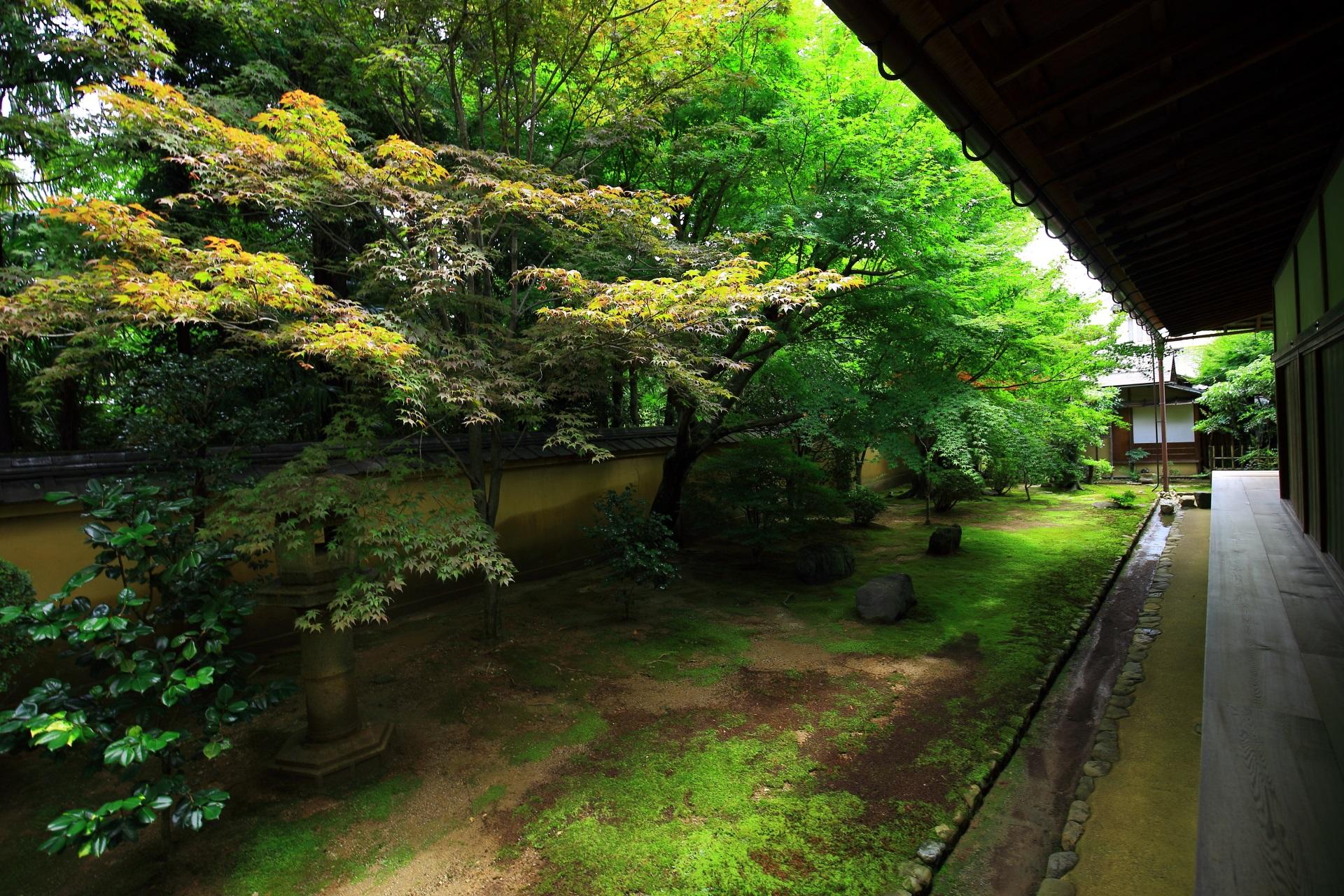 方丈を囲むように庭園が広がる興臨院