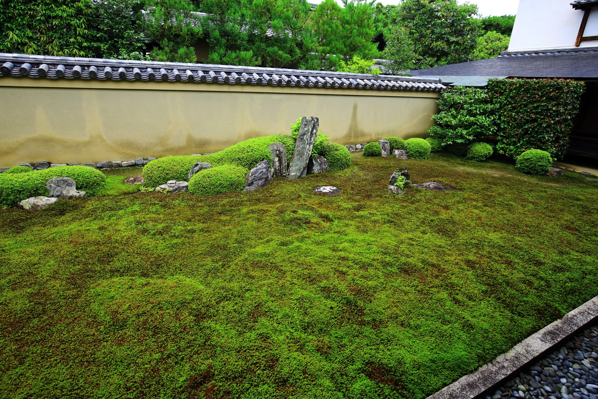 苔に覆われた緑の枯山水庭園の龍吟庭