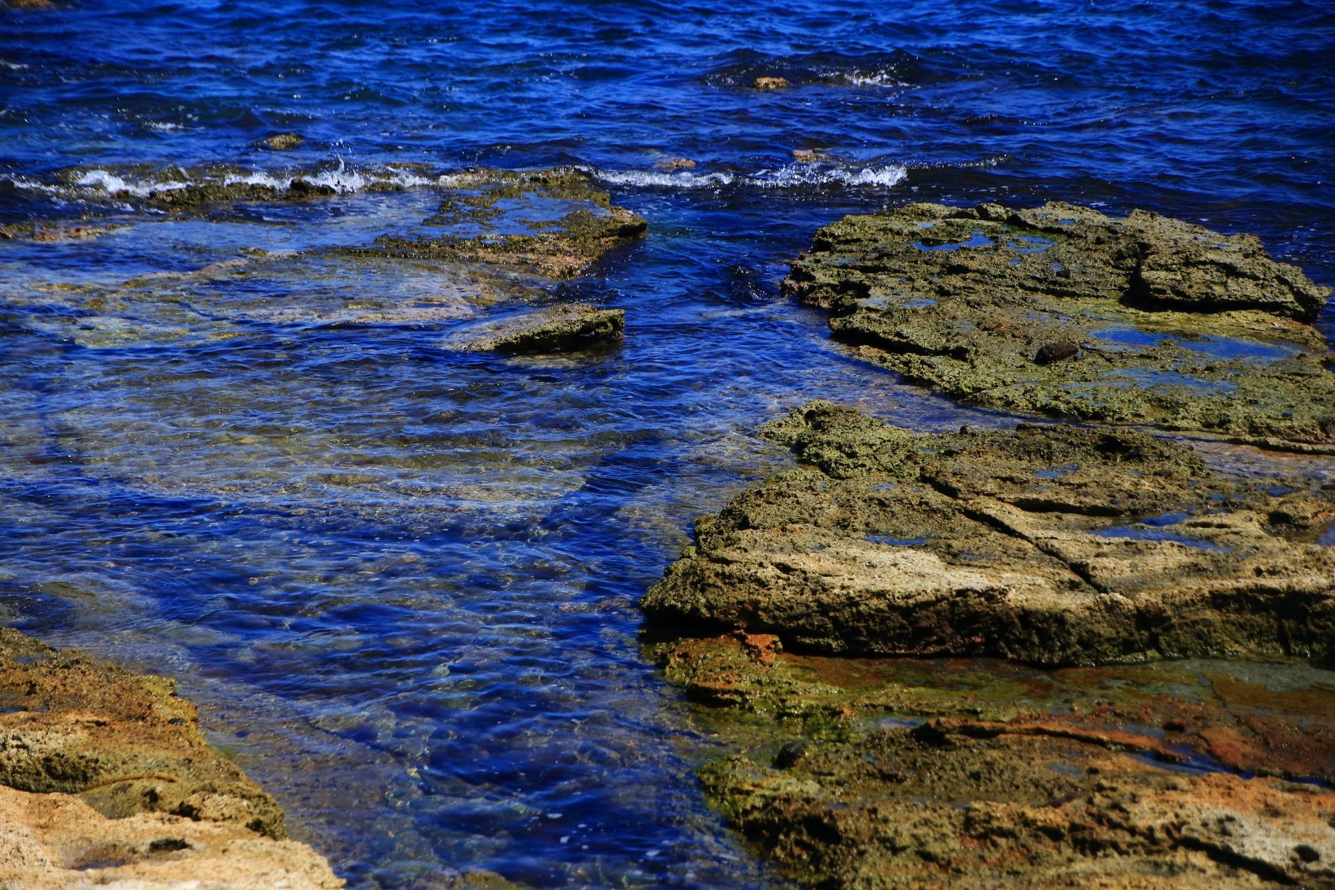 岩場を潤す澄みきった海水