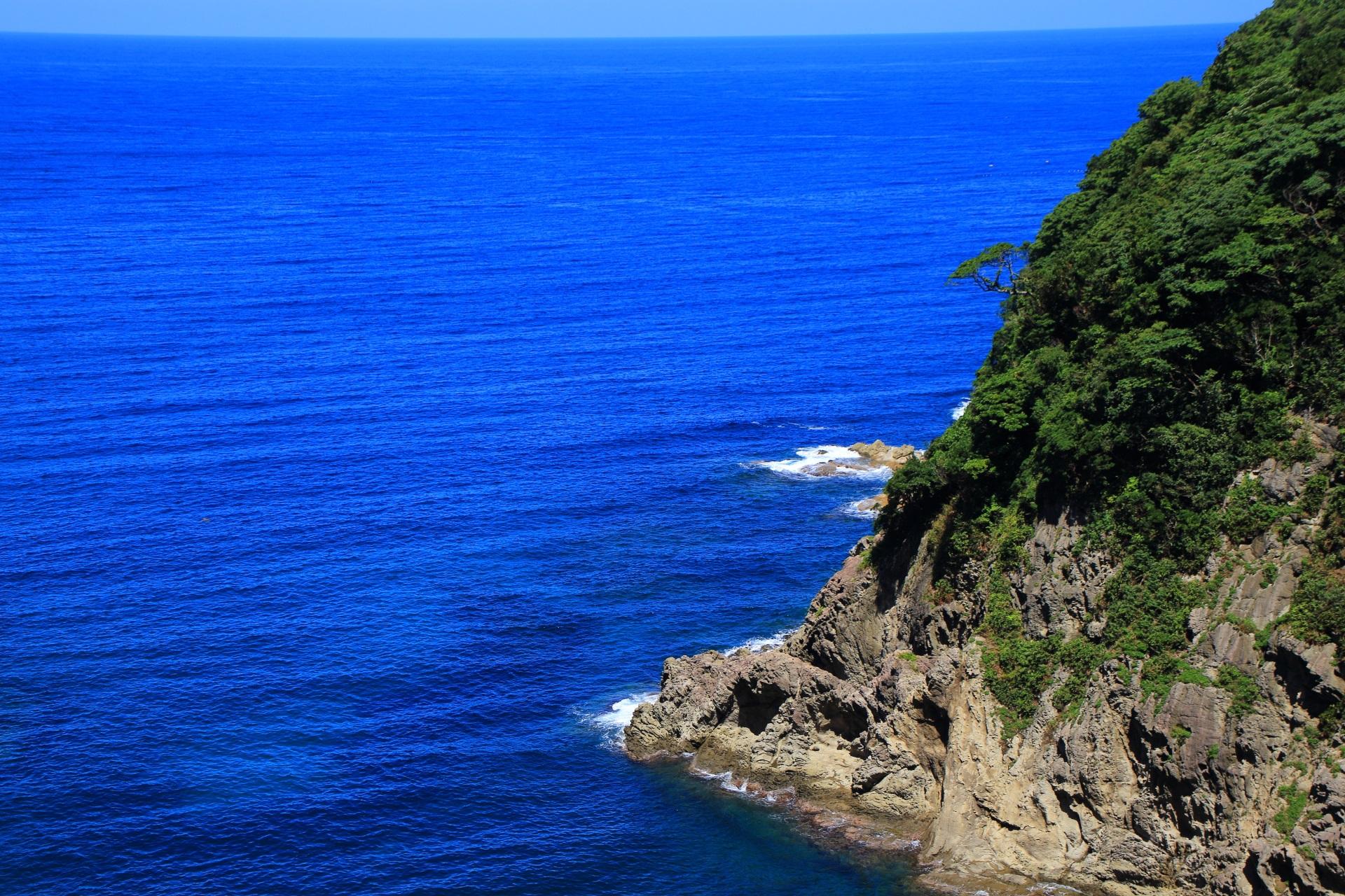 断崖絶壁に立派に育つ緑や木々