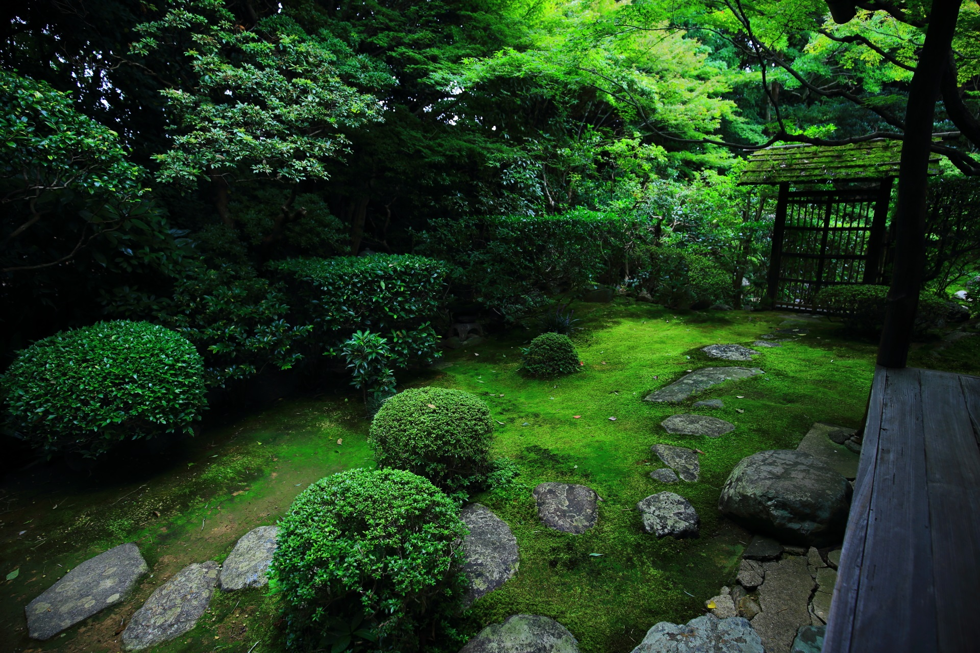 Beautiful garden of Keishun-in Temple in Kyoto,Japan