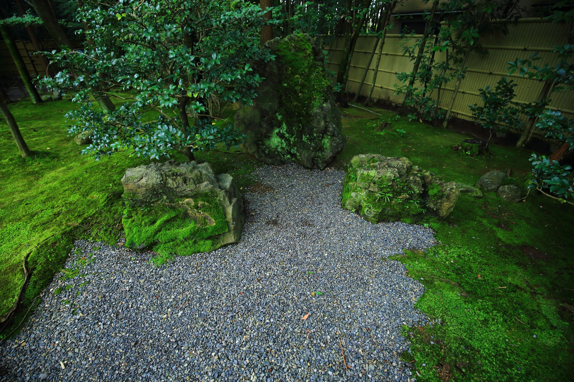真如の庭の南の岩や苔
