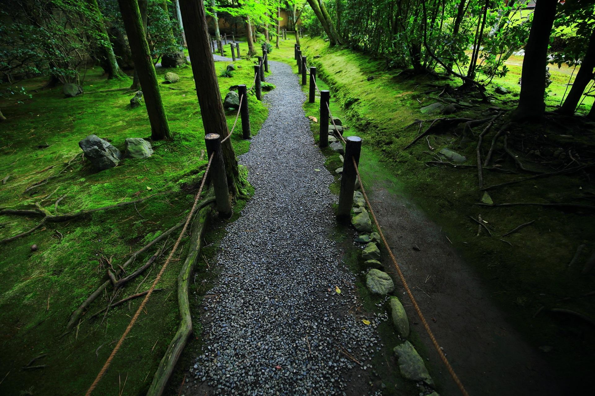 真如の庭の南の風情ある参道