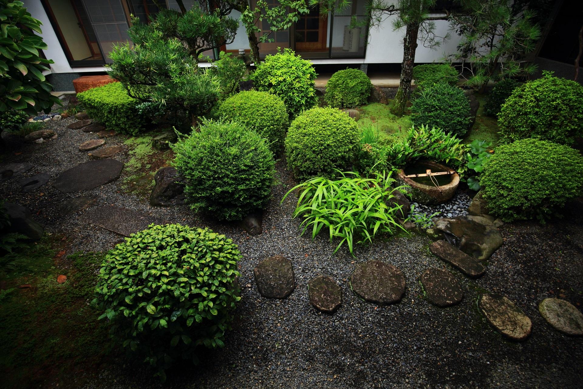 飛び石や緑の美しい落ち着きのある妙蓮寺の中庭