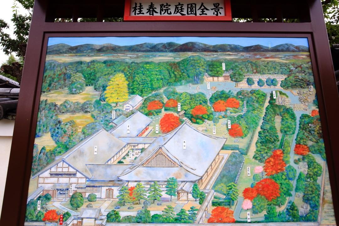 桂春院の庭園全景