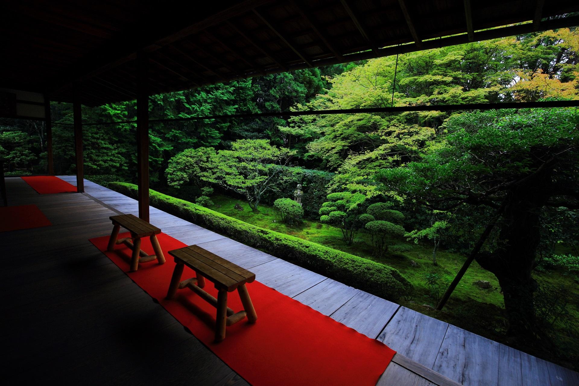 素晴らしい桂春院の庭園