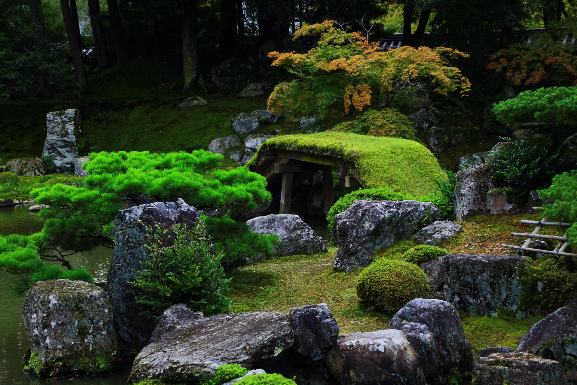 Beautiful garden of Sanbo-in Temple in Kyoto