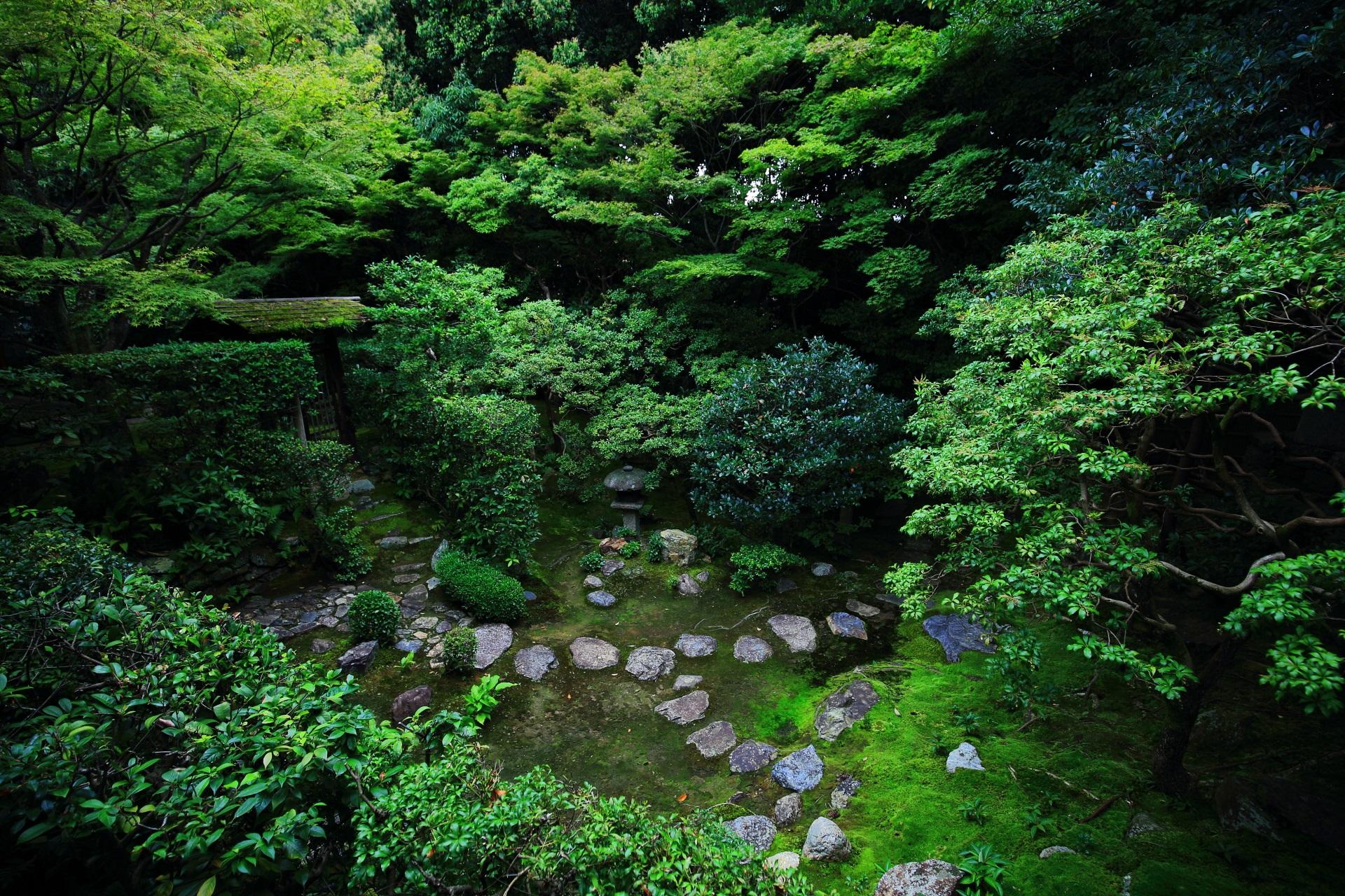 緑と飛び石の見事な思惟の庭(しいのにわ)