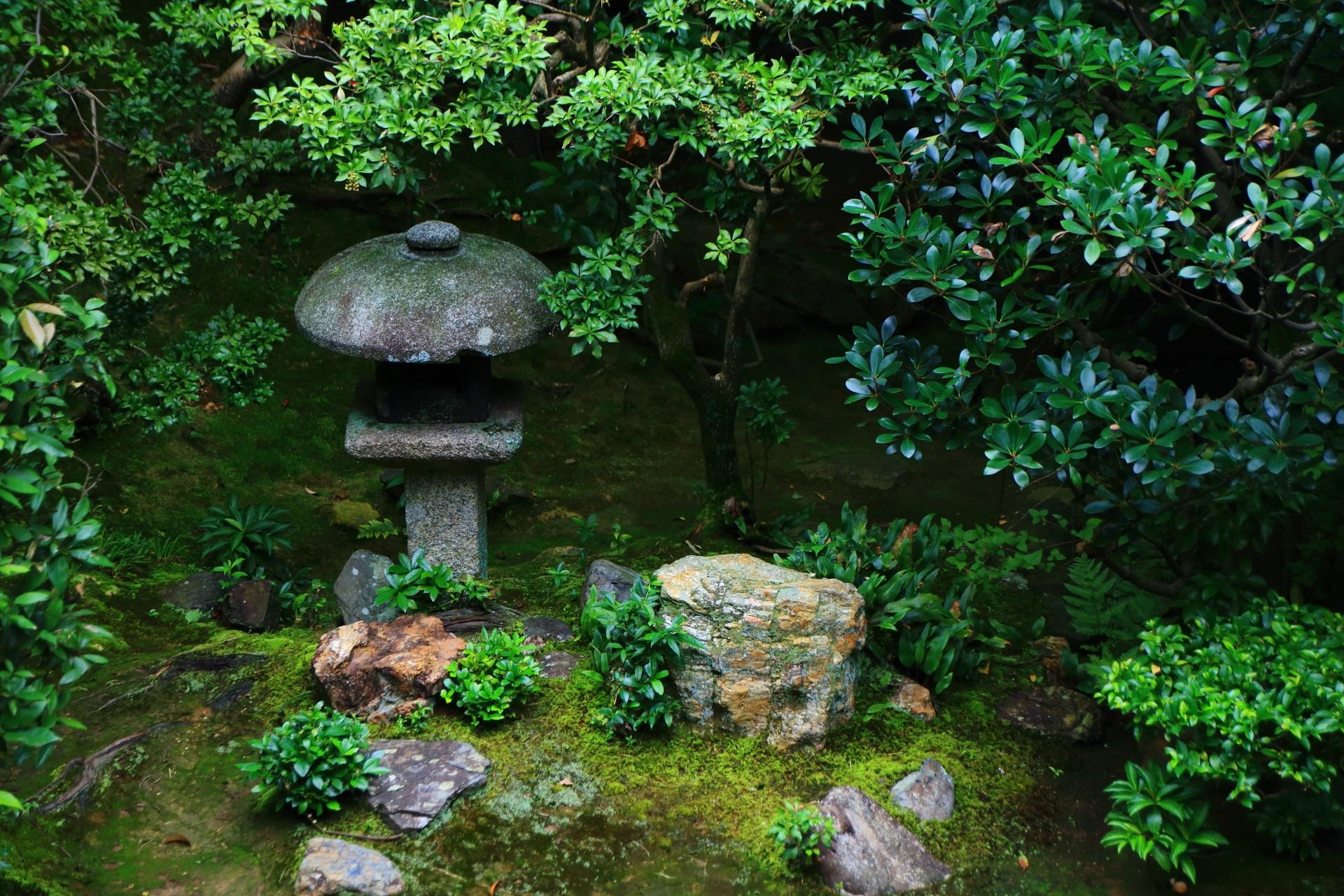 絵になる灯籠と美しい緑や岩