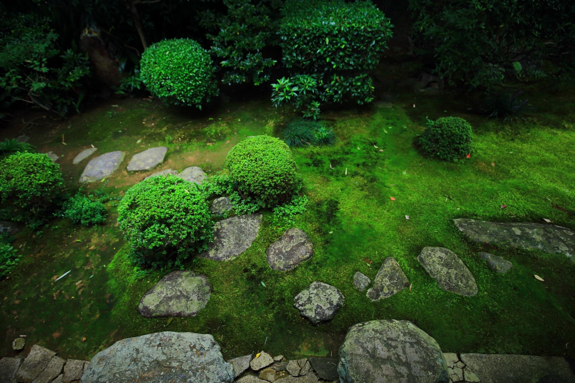 緑と飛び石の美しい侘の庭