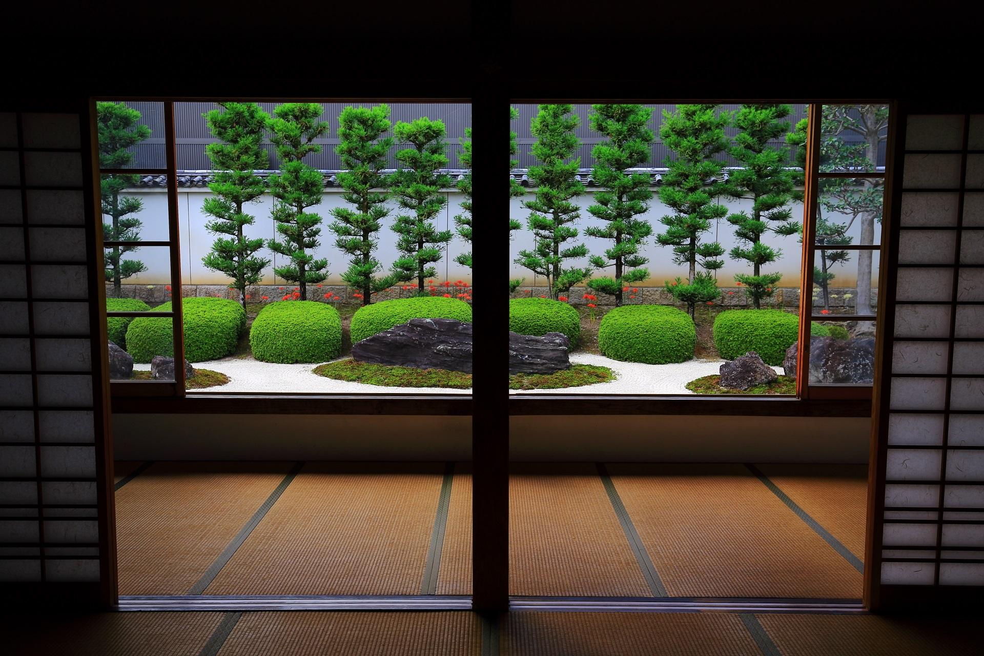 十六羅漢石庭の素晴らしい彼岸花と情景