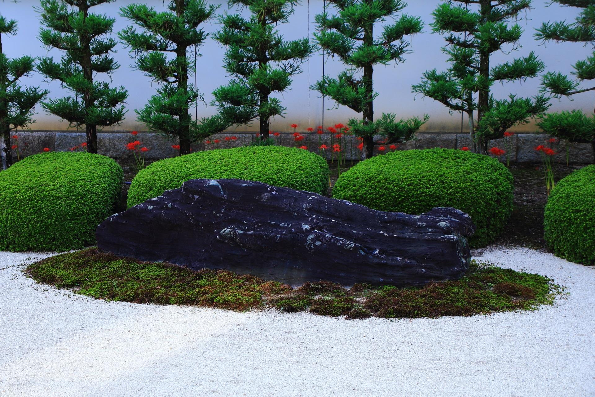 妙蓮寺の十六羅漢石庭に咲く赤い彼岸花