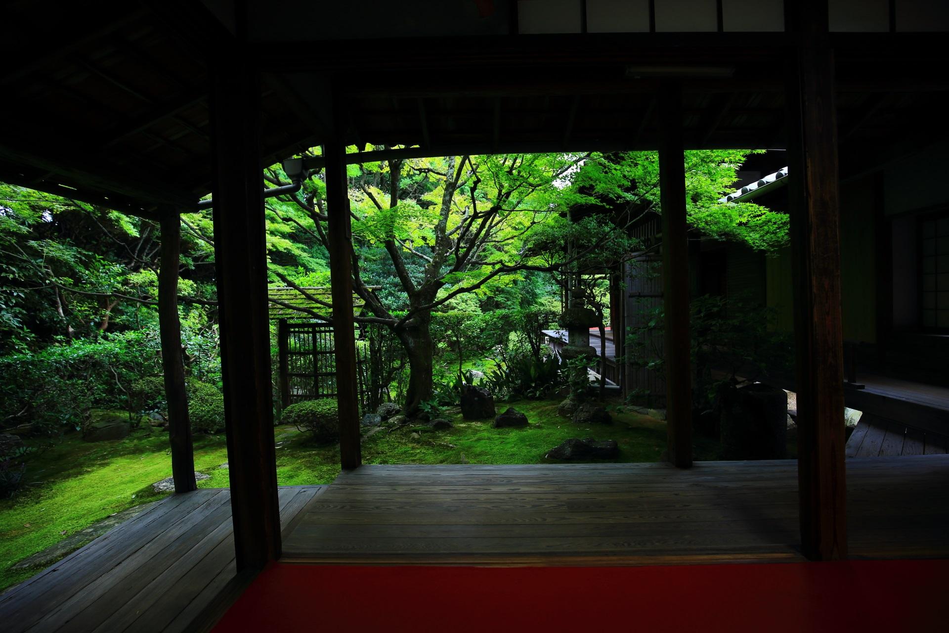 高画質 桂春院 写真 庭園