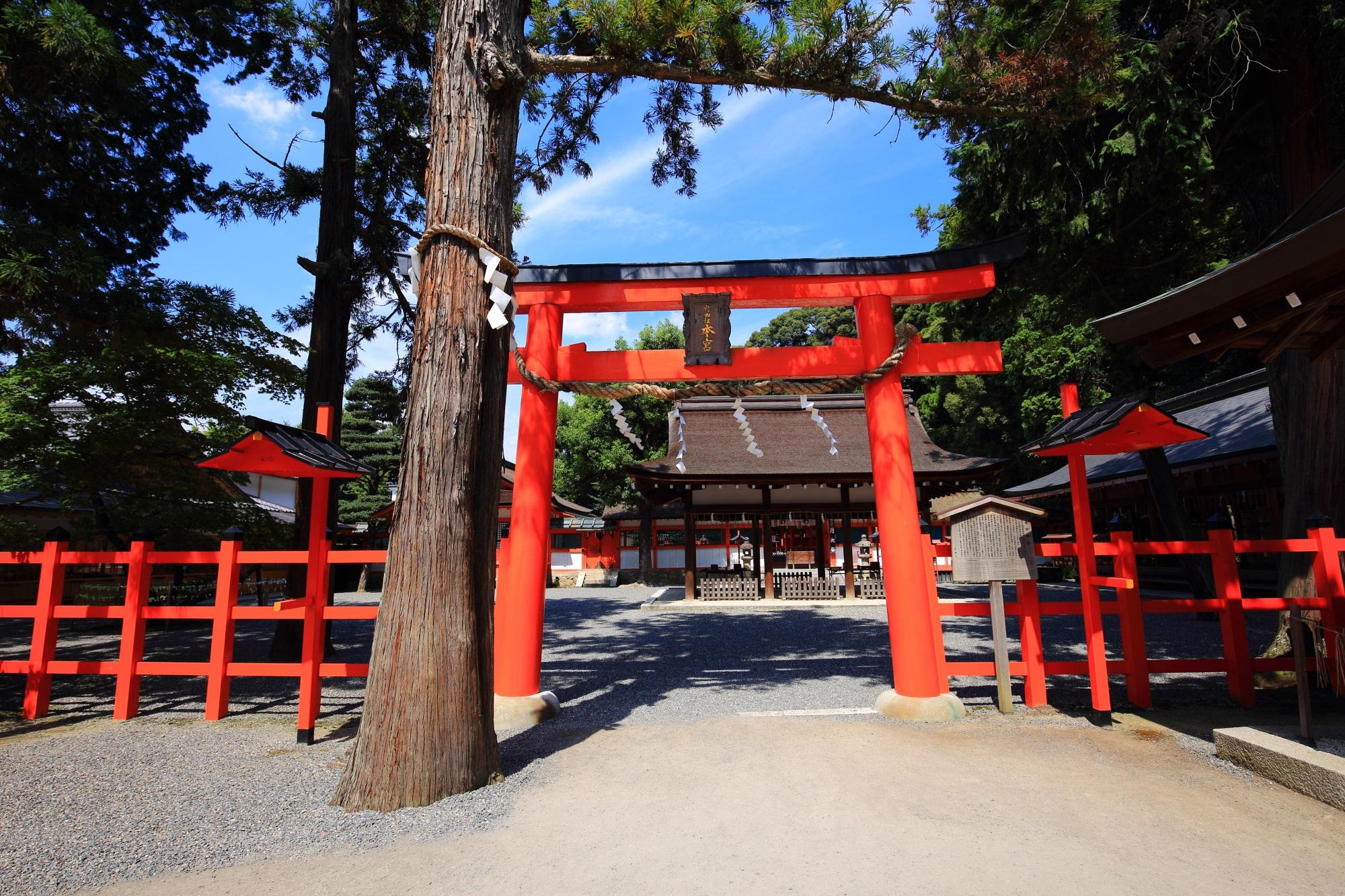 京都吉田神社の本宮