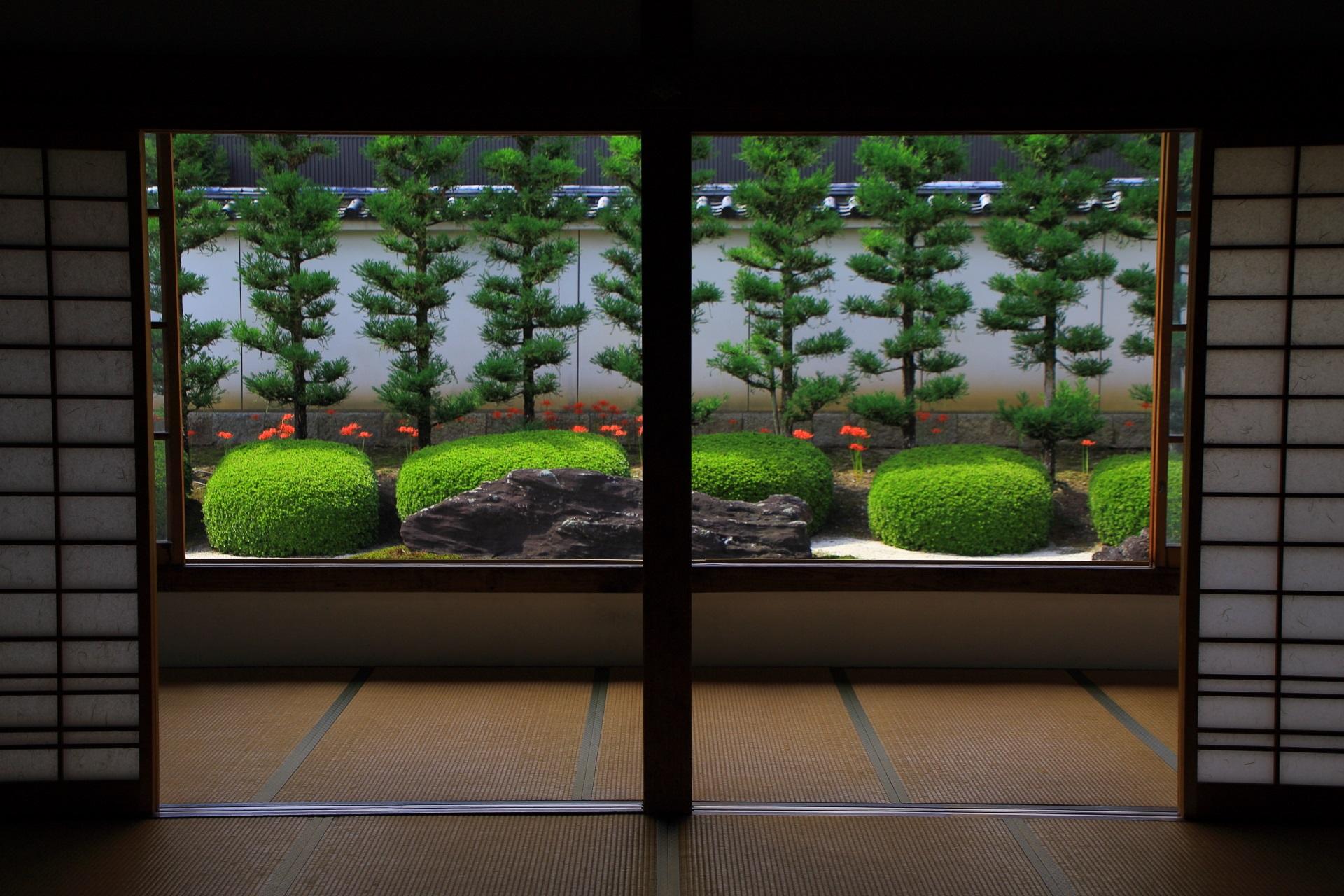 光の具合で浮かび上がる妙蓮寺の石庭の彼岸花