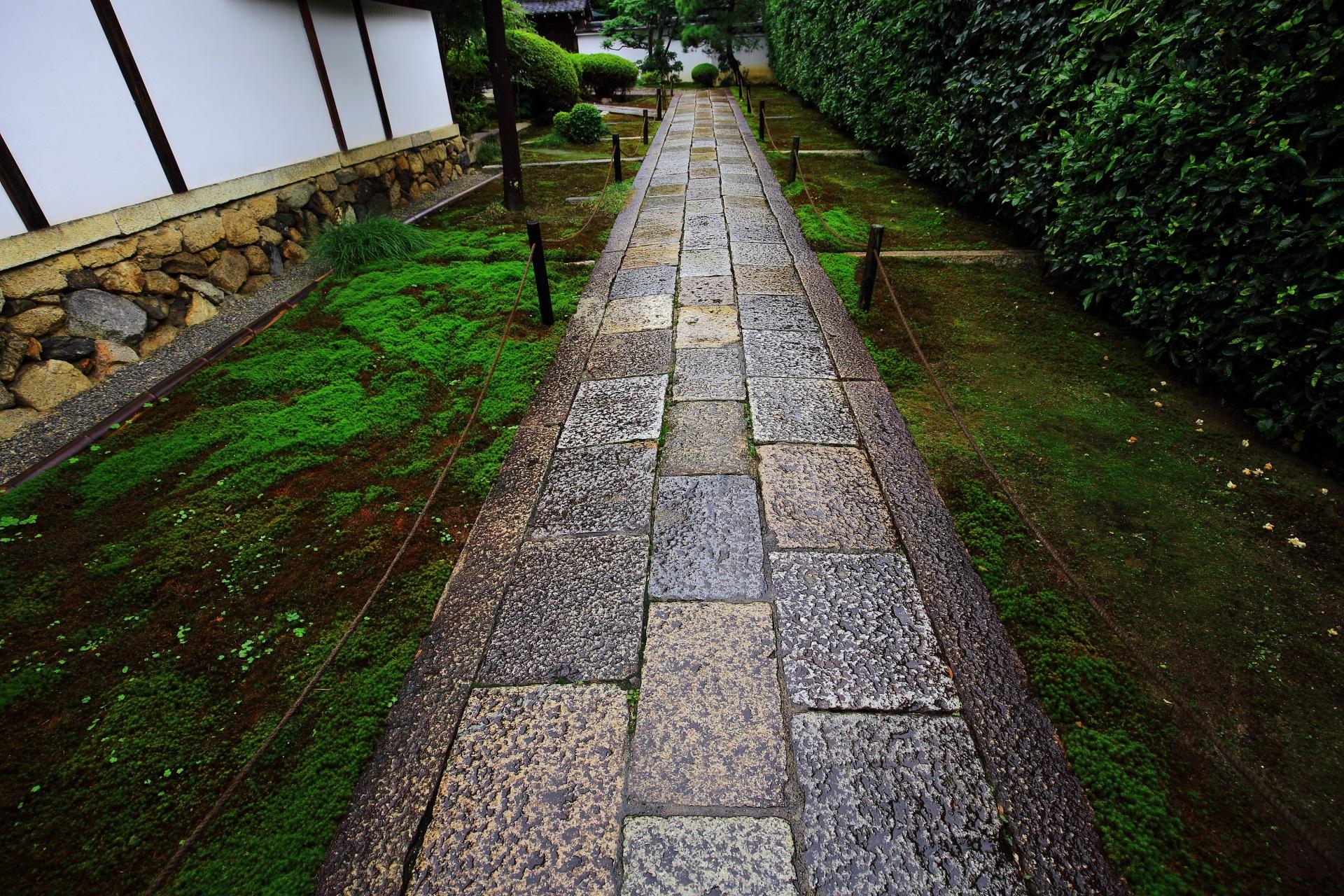 雪舟寺とも呼ばれる芬陀院の石畳の参道