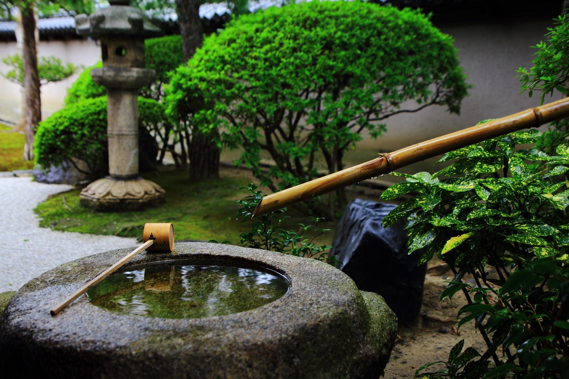客殿前庭園の風情ある手水鉢
