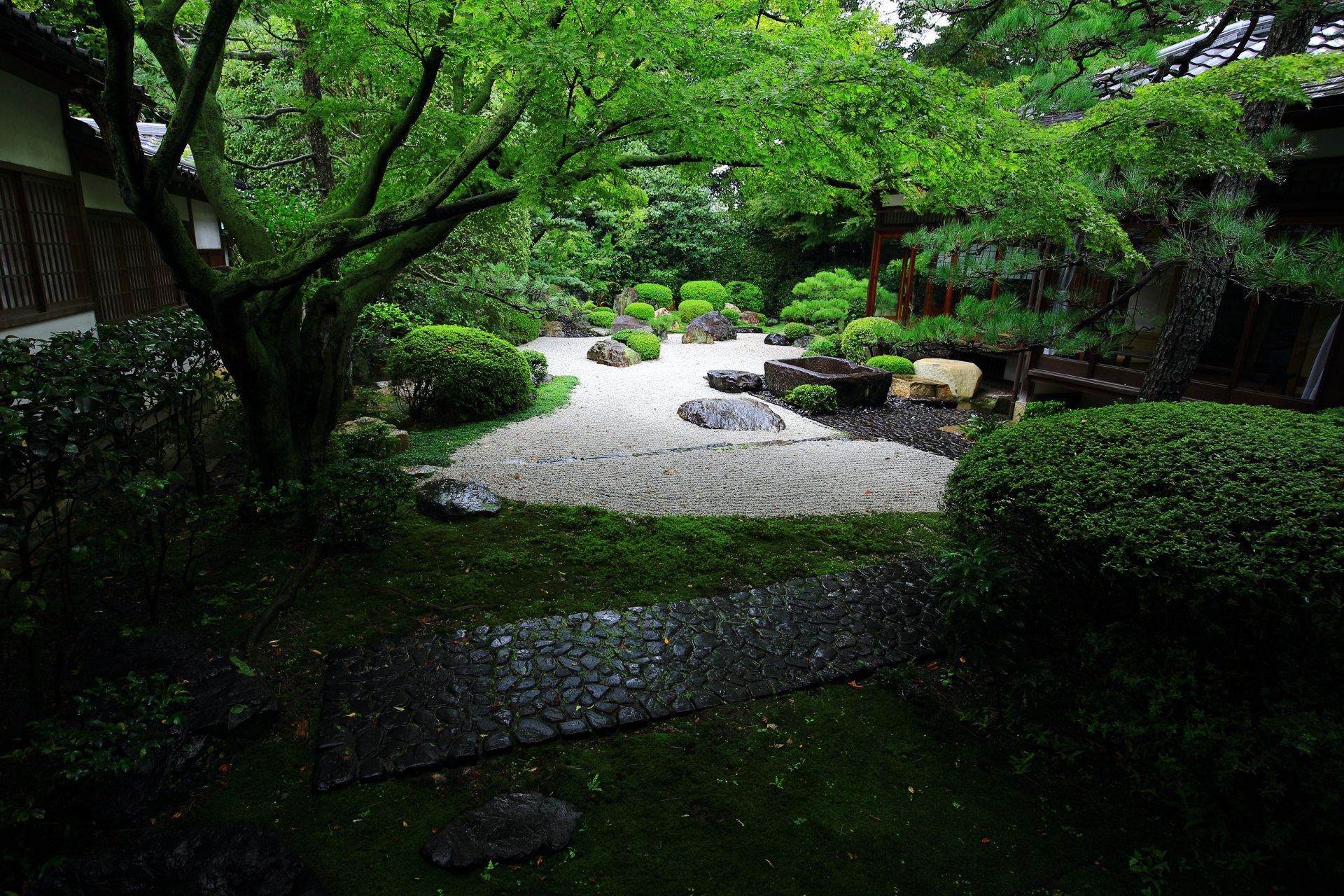 御香宮神社の枯山水庭園と青もみじ