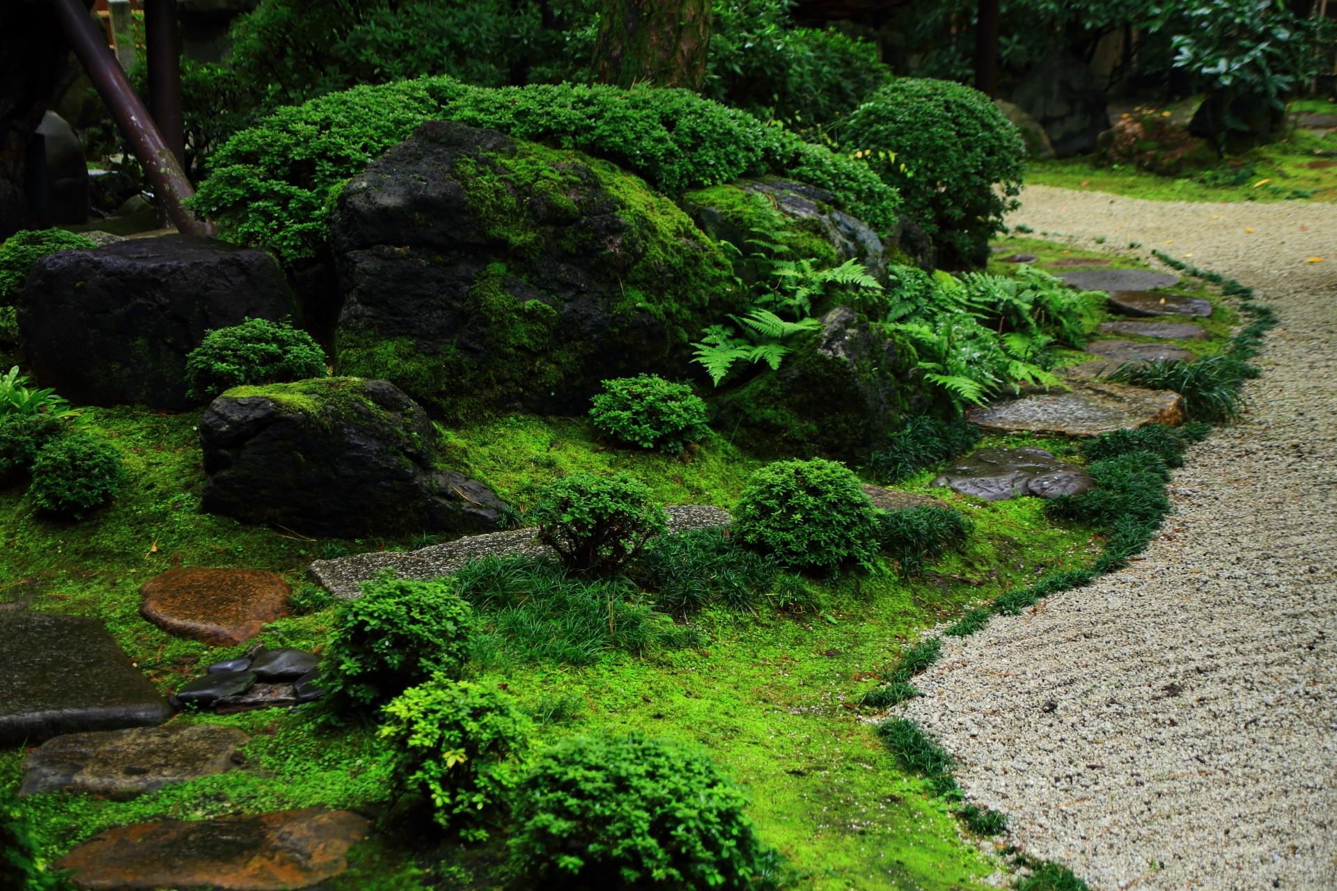 多種多様な植物の緑が綺麗な臥龍松の庭