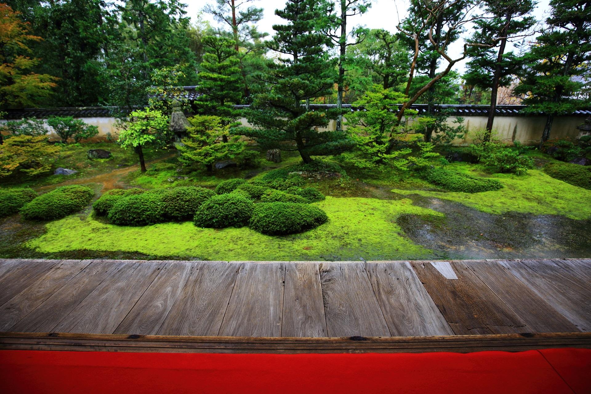 大雄院の赤い絨毯が映える枯山水庭園