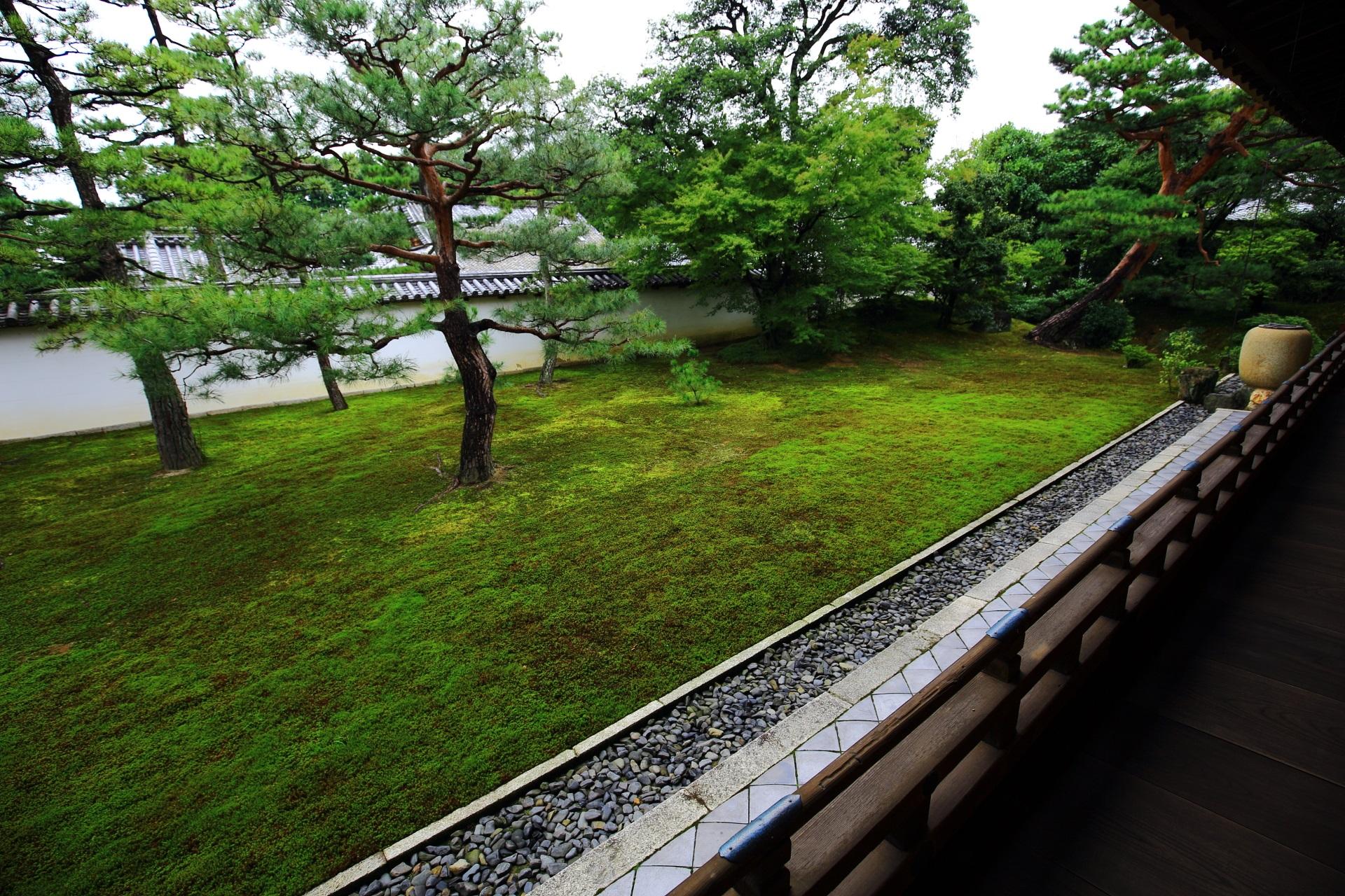緑の苔の美しい相国寺の方丈庭園