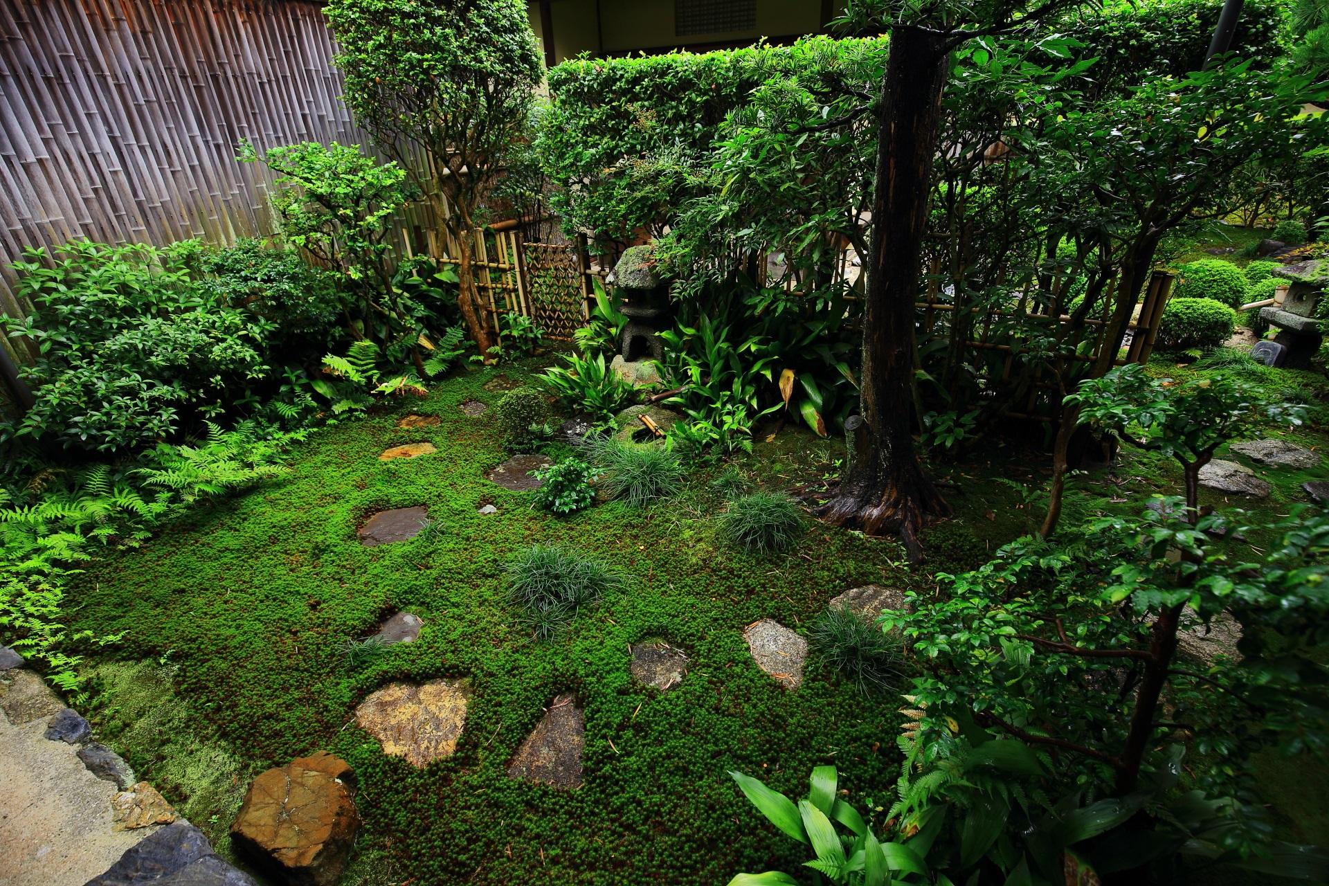 雪舟寺のお茶の庭