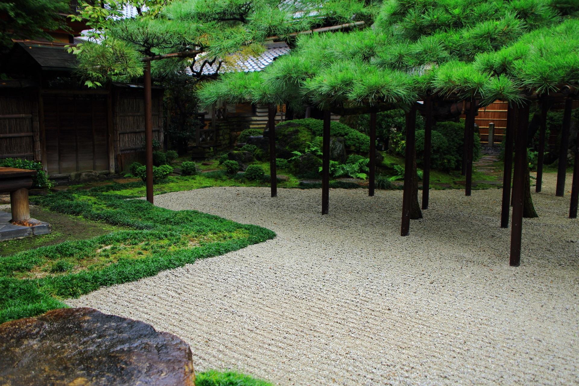 白砂と緑のコントラストが綺麗な臥龍松の庭