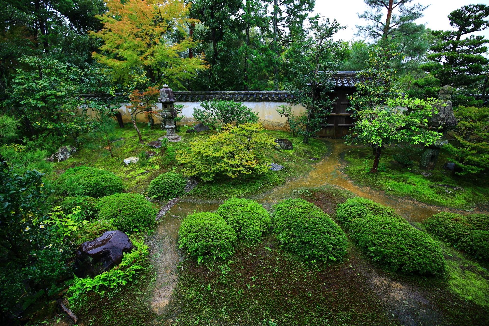 様々な植物が植えられた大雄院の庭園