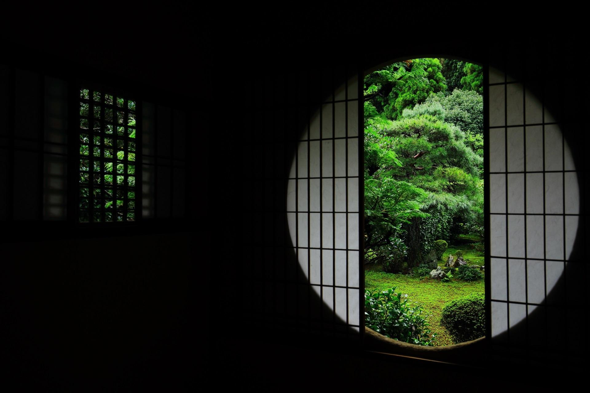 芬陀院の茶室「恵観堂」と緑の綺麗な庭園