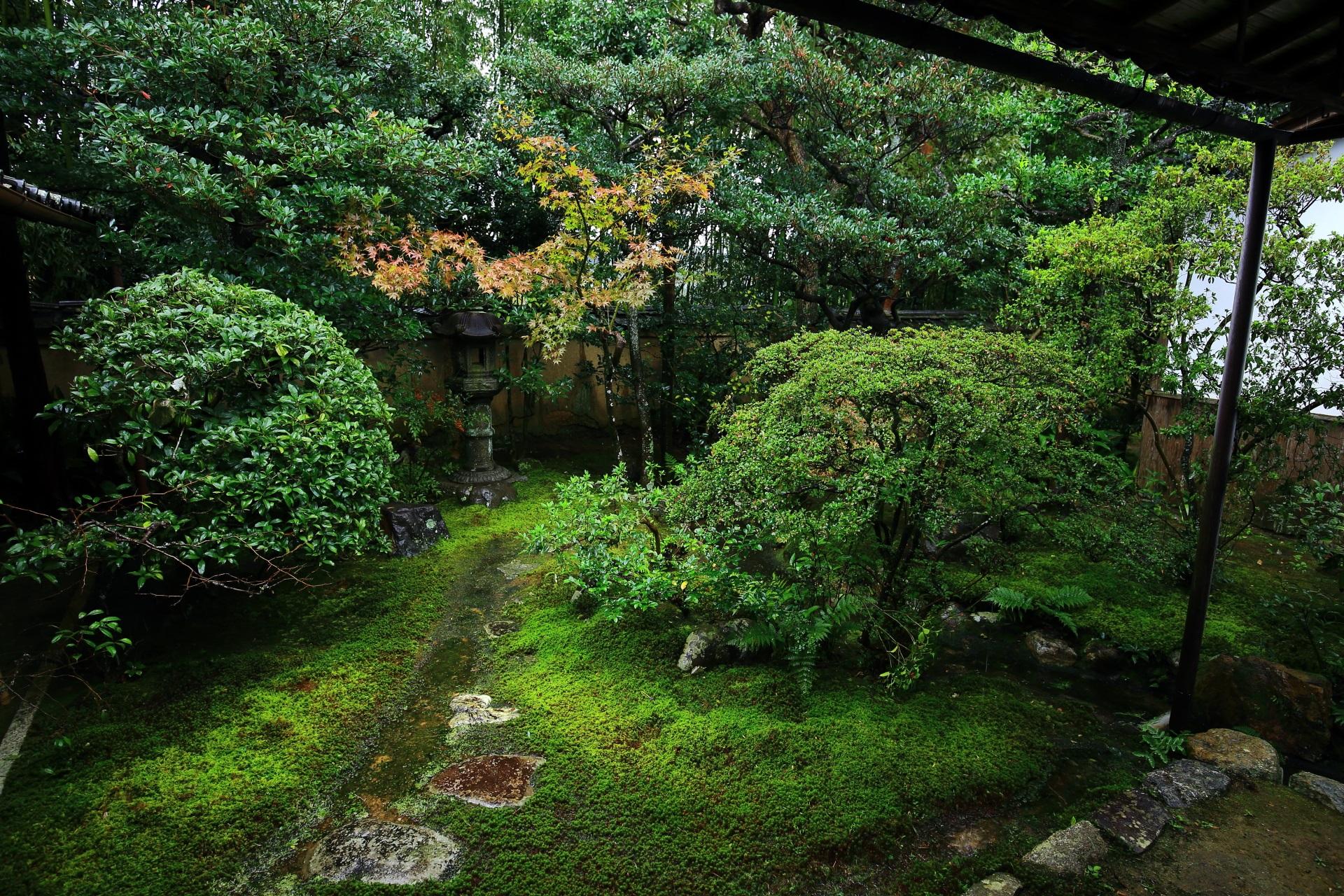 大雄院の土蔵前の庭園