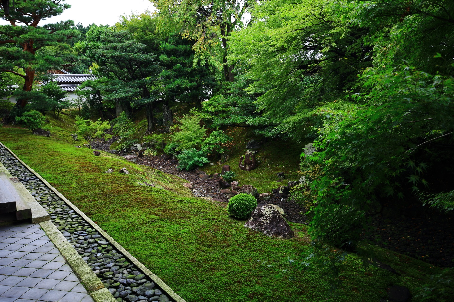 A unique and beautiful garden in Shokokuji-Temple in Kyoto