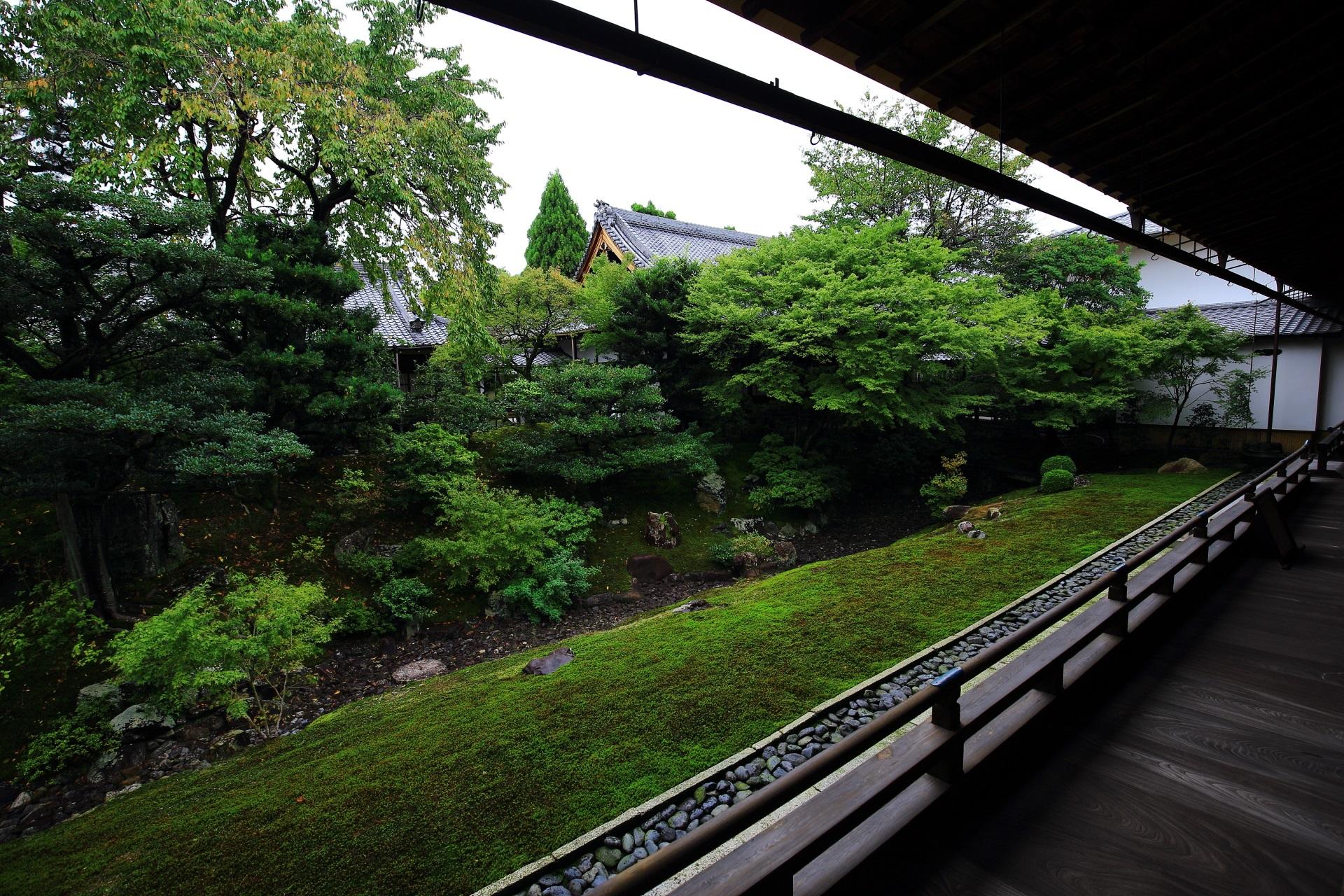 相国寺の裏方丈庭園(うらほうじょうていえん)