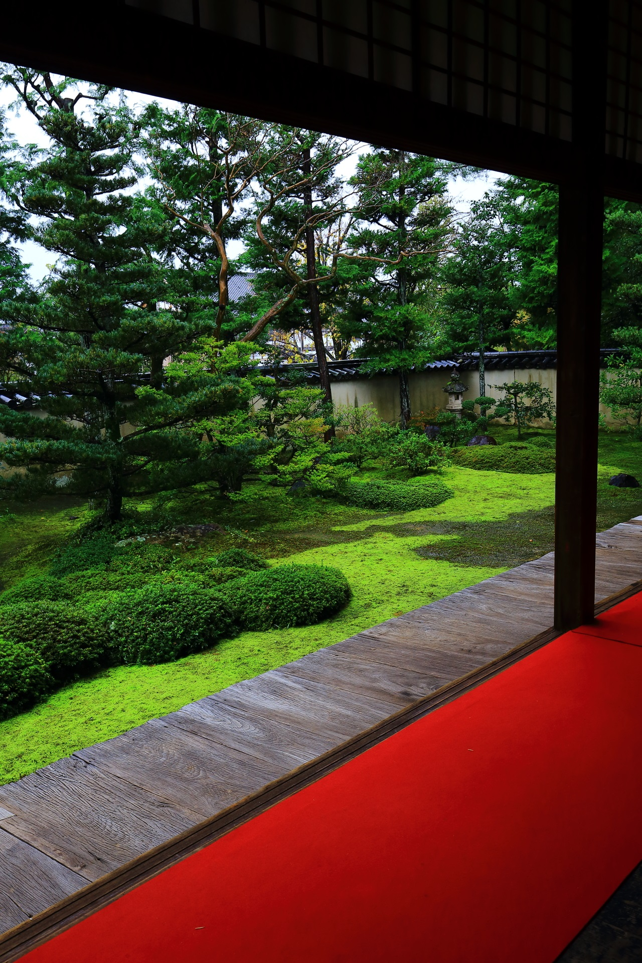 A garden with a beautiful moss of Daio-in Temple of Myoshin-ji Temple in Kyoto