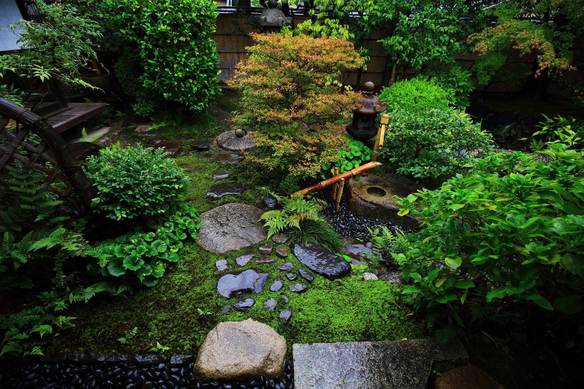 観智院の茶室「楓泉観(ふうせんかん)」の露地庭