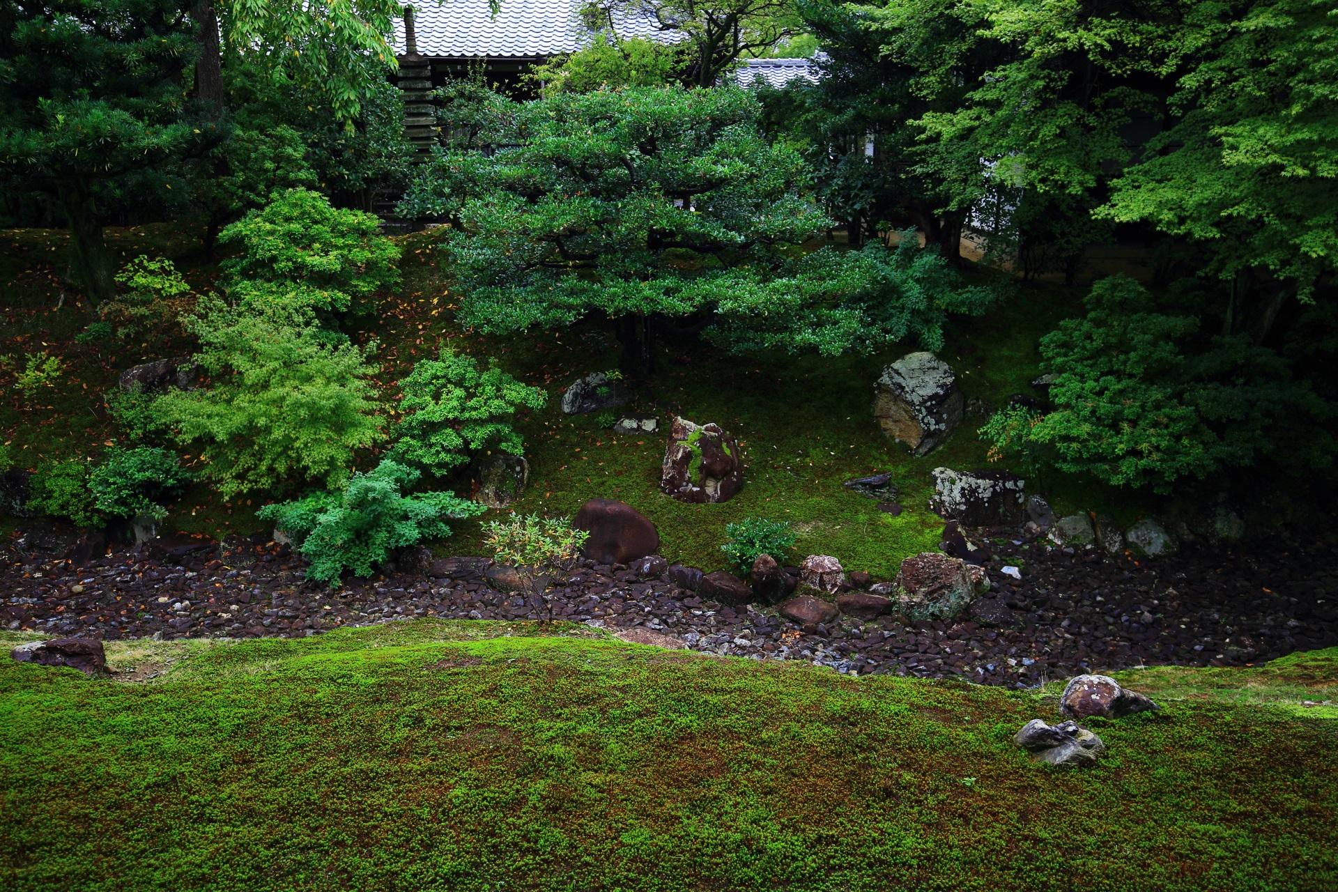 相国寺裏方丈庭園の緑と枯流(かれながれ)