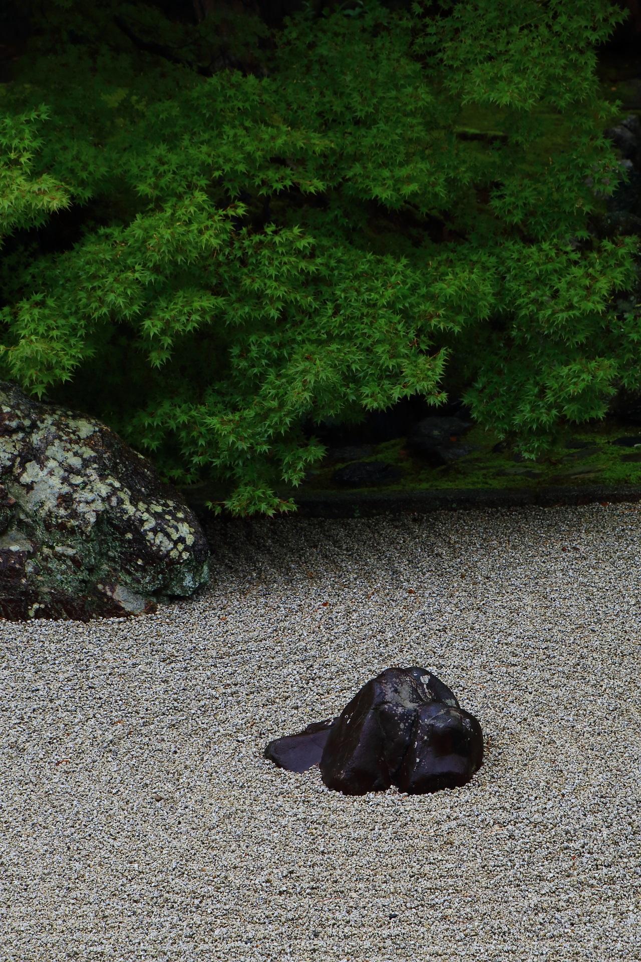 相国寺開山堂の日本庭園