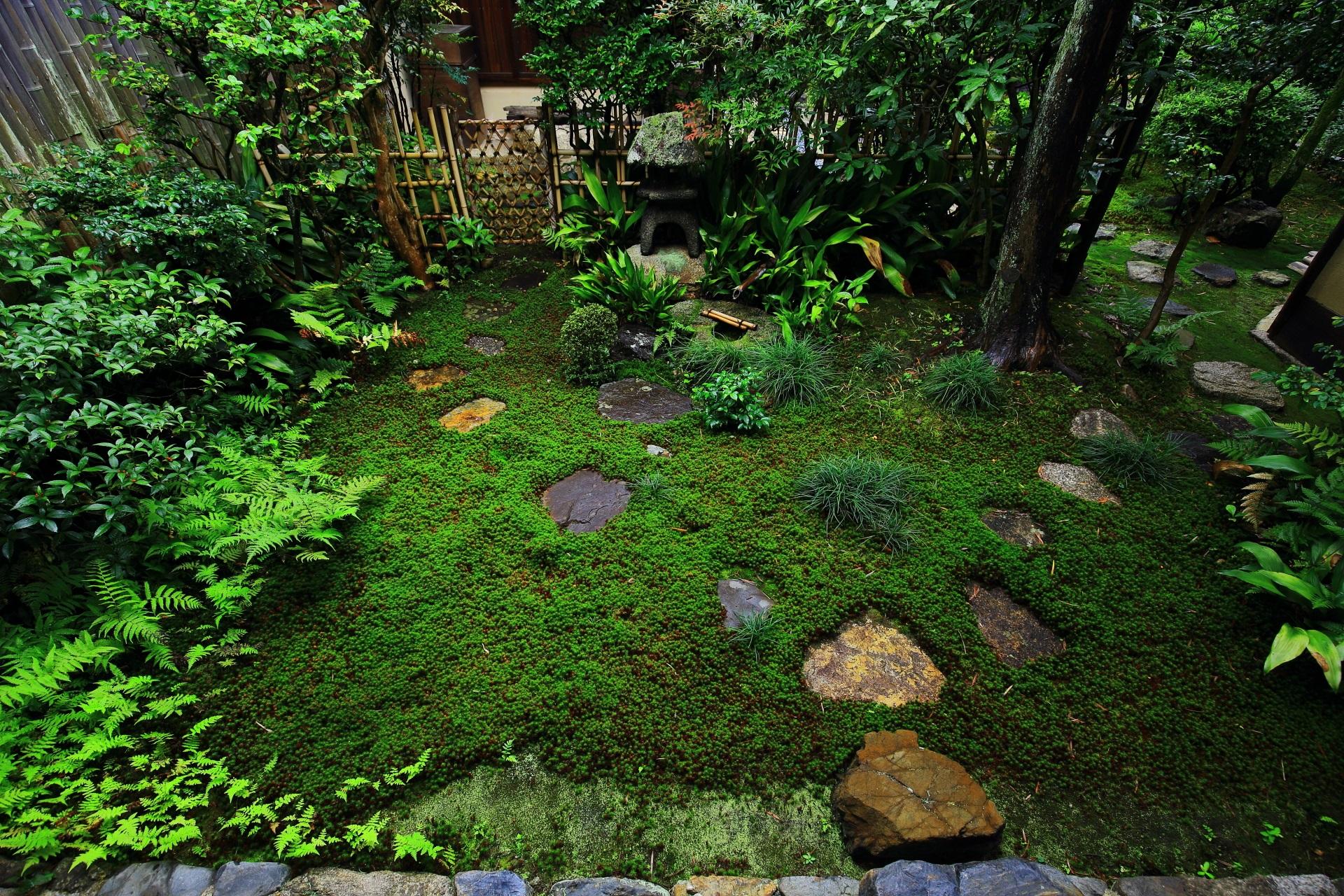 芬陀院の露地庭