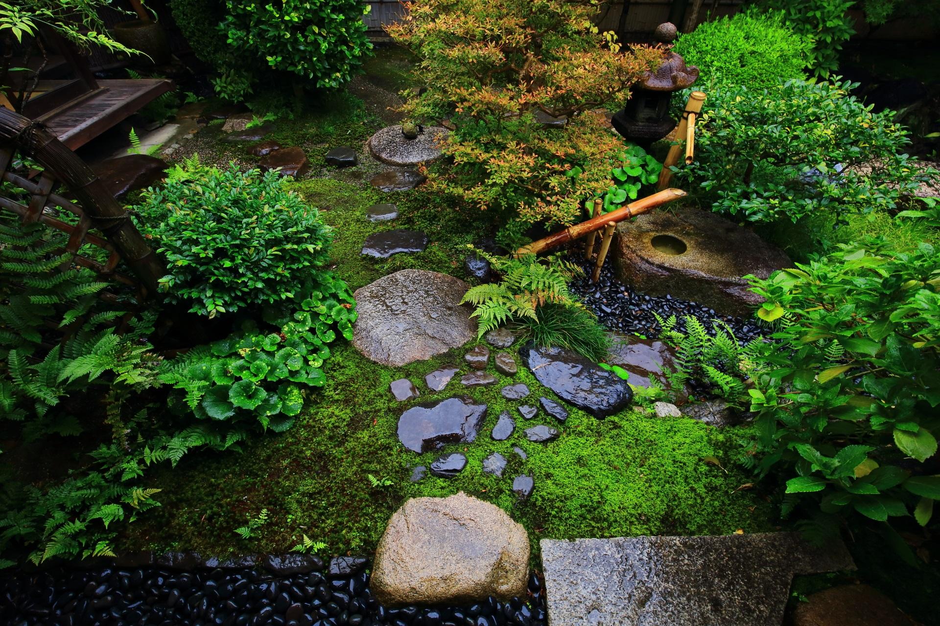 観智院の風情ある露地庭