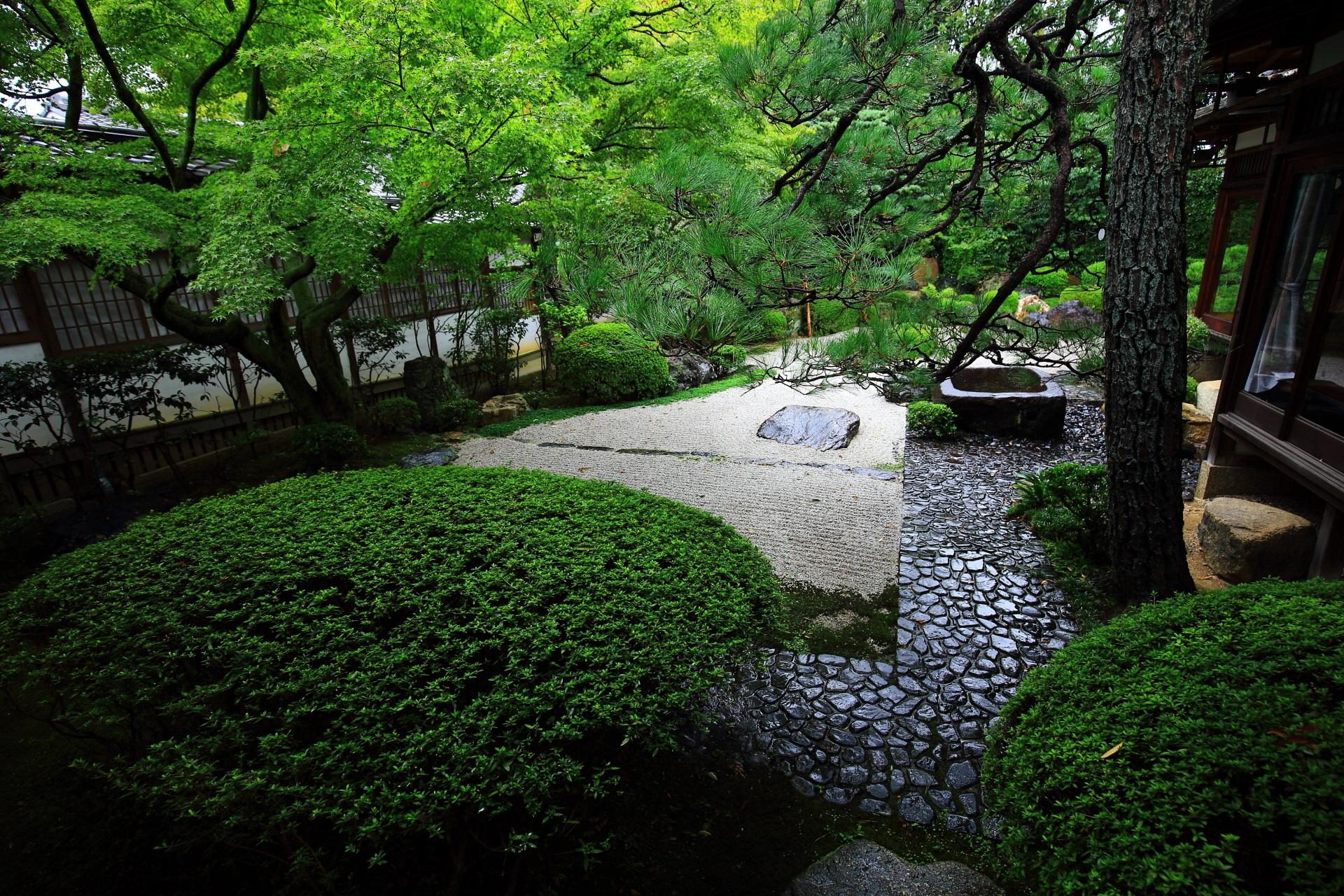 御香宮神社の石庭のサツキの刈り込みと緑
