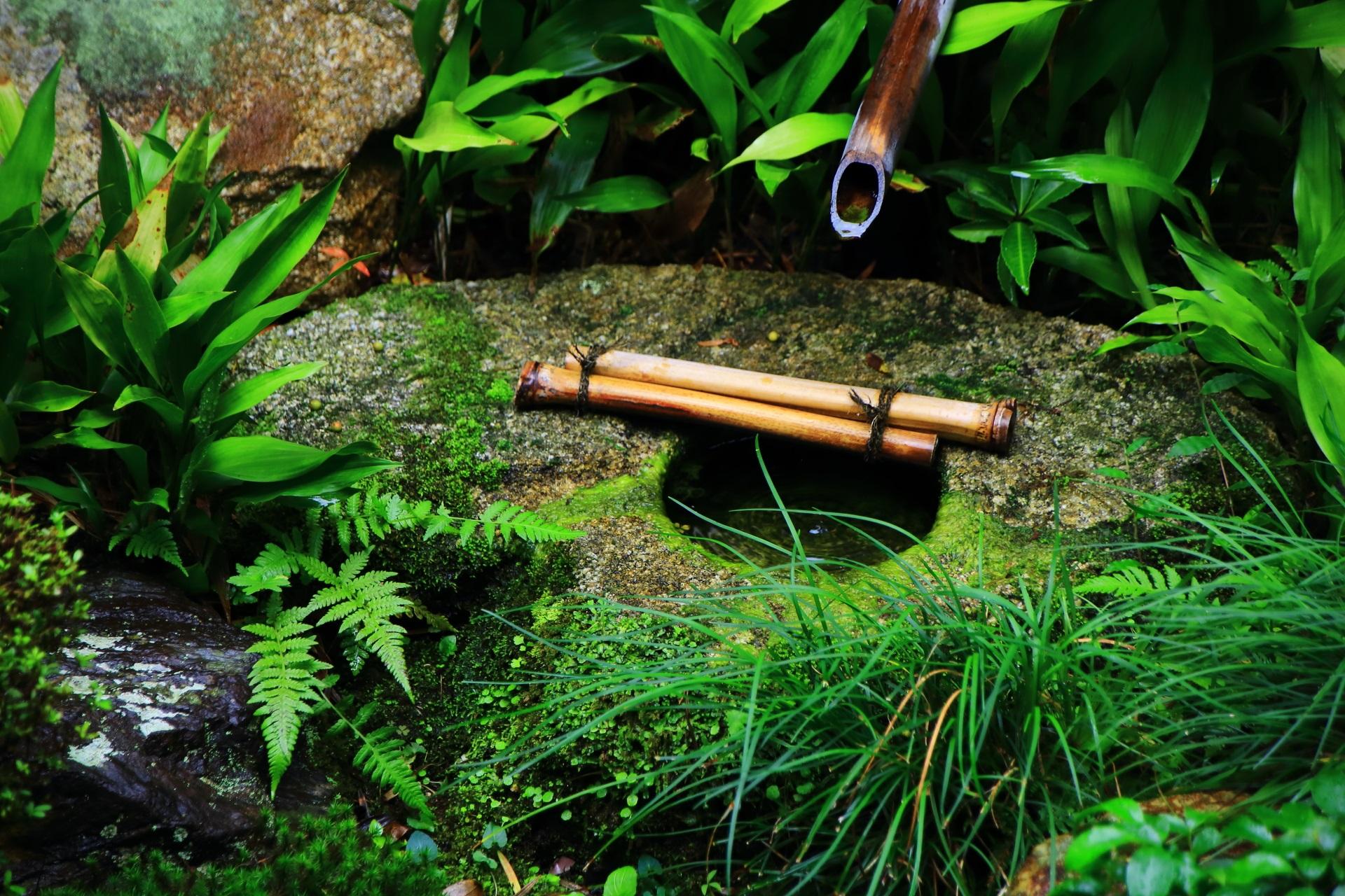 蓬莱式の勾玉(まがたま)の手水鉢